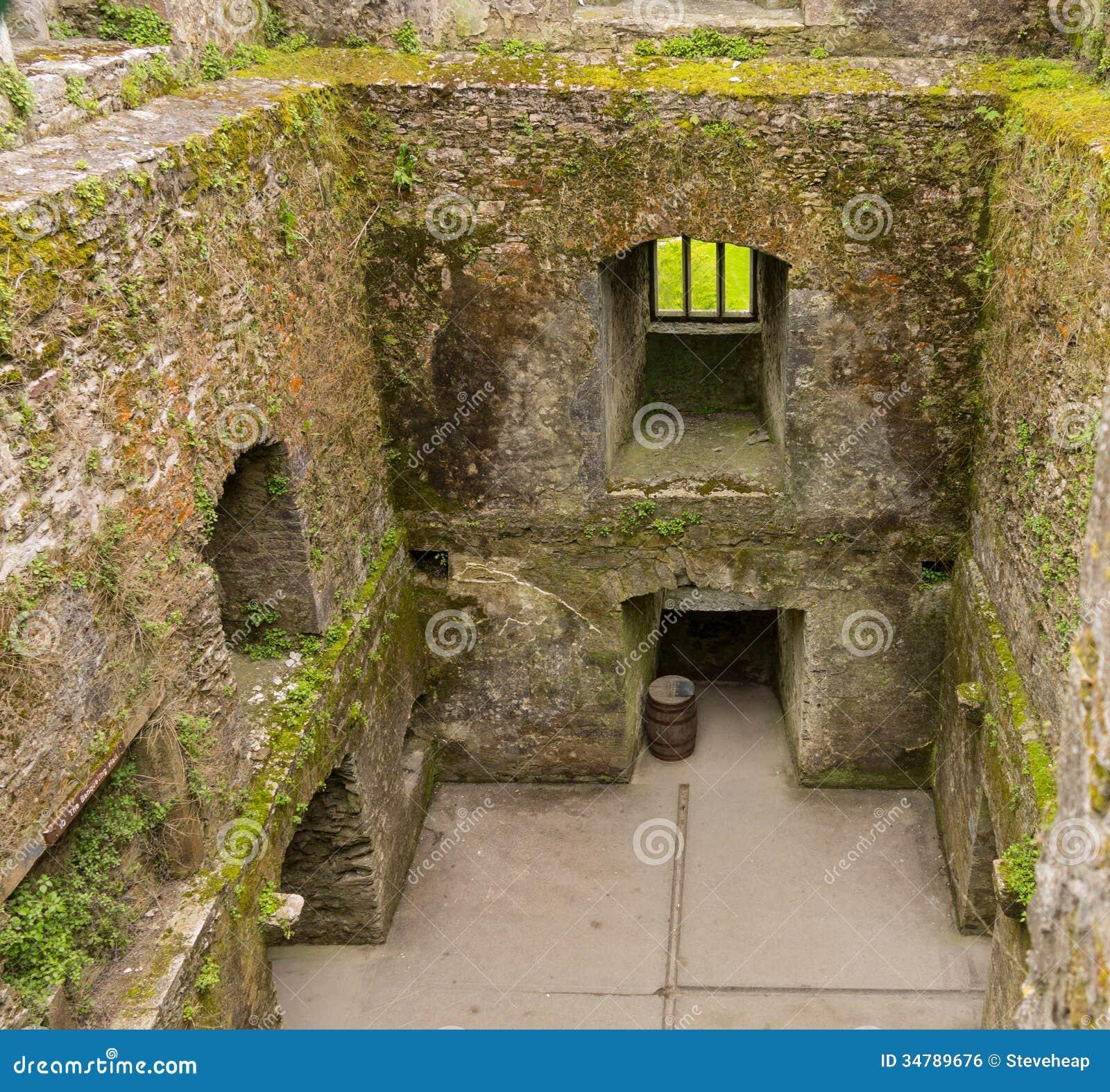 Cork People: Blarney Castle Near Cork Royalty Free Stock Image