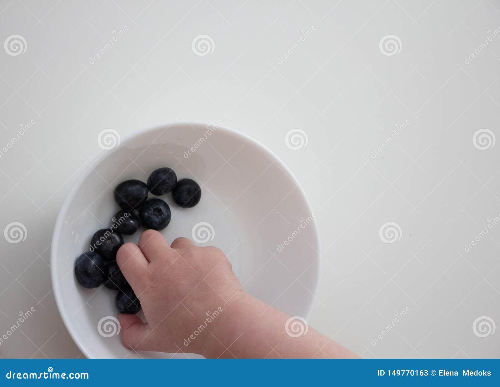 Blaubeeren in den Händen eines Kindes Kinderhand nimmt Blaubeeren von einer weißen Schüssel auf einem weißen Hintergrund
