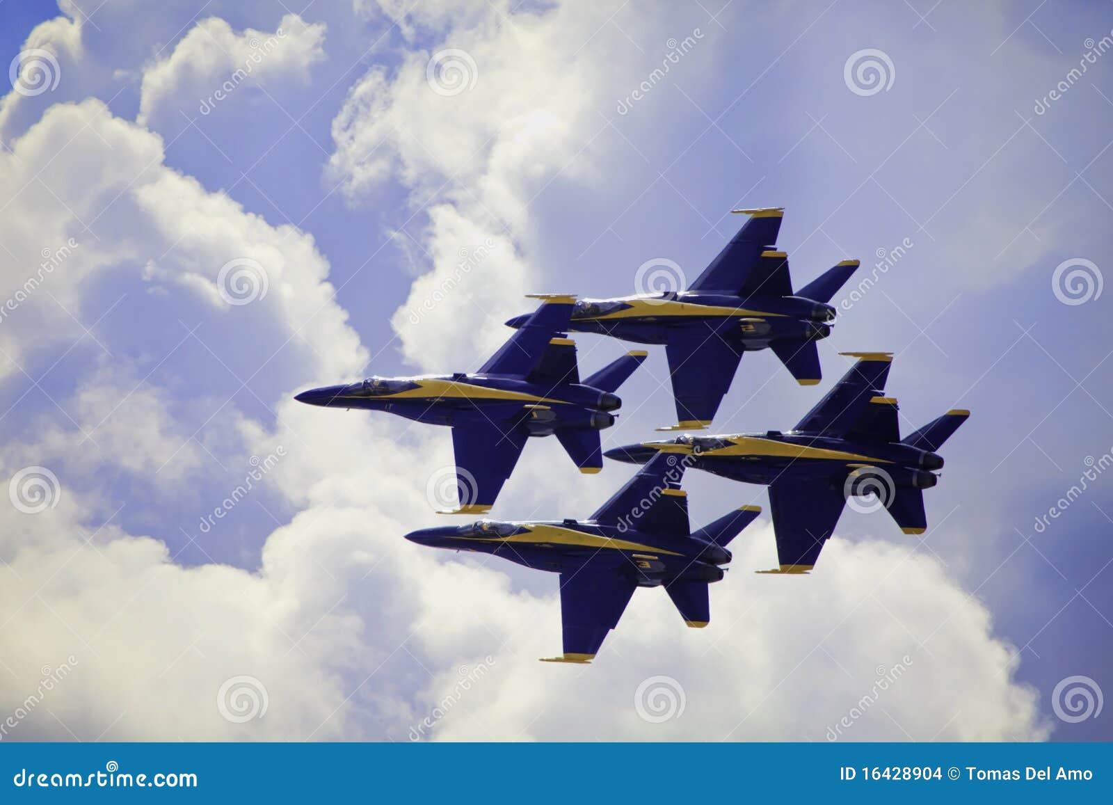 Blaue Engel im Flug