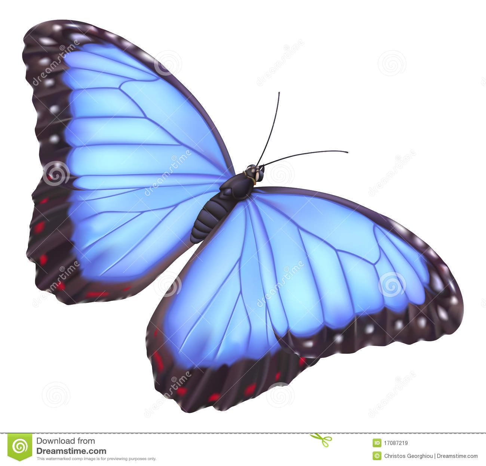 Blaue morpho Basisrecheneinheit