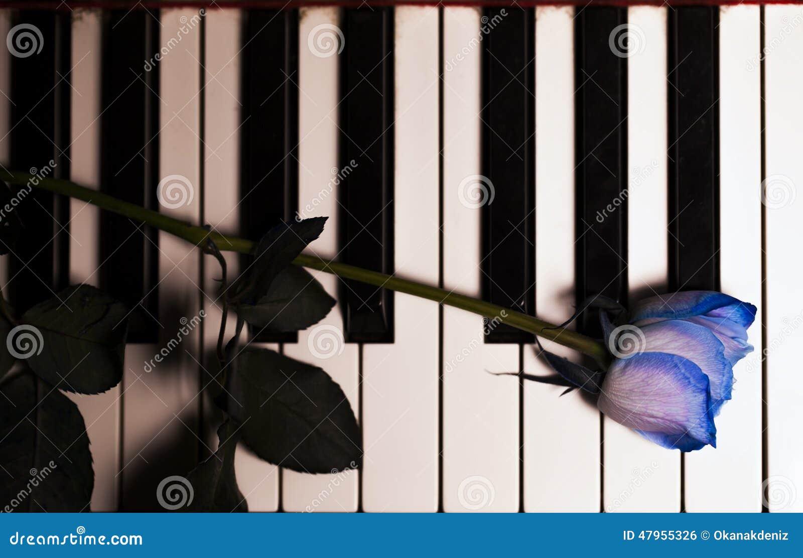 blaue rose und kerze auf klavier schl sseln stockfoto bild 47955326. Black Bedroom Furniture Sets. Home Design Ideas