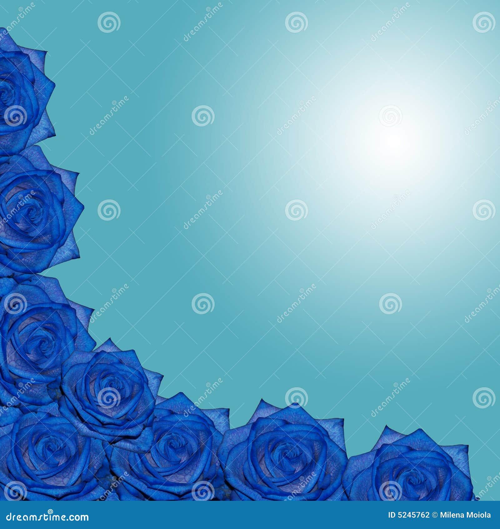 blaue rosen stock abbildung bild von leerzeichen dekorativ 5245762. Black Bedroom Furniture Sets. Home Design Ideas
