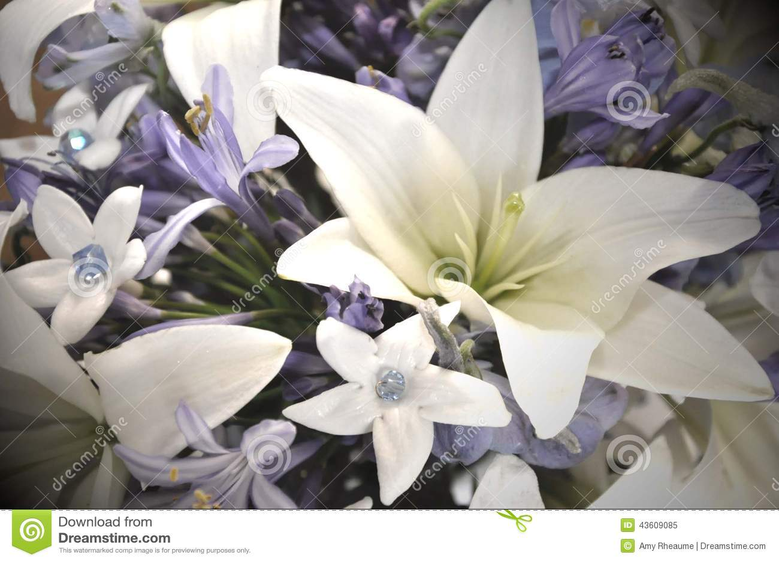 Blaue Und Weisse Hochzeitsblumen Stockbild Bild Von Blau Akzente