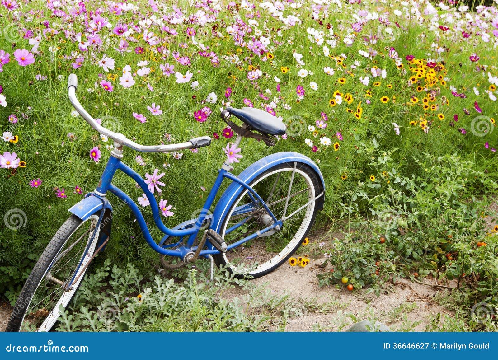 Blauer Fahrrad-Blumen-Garten