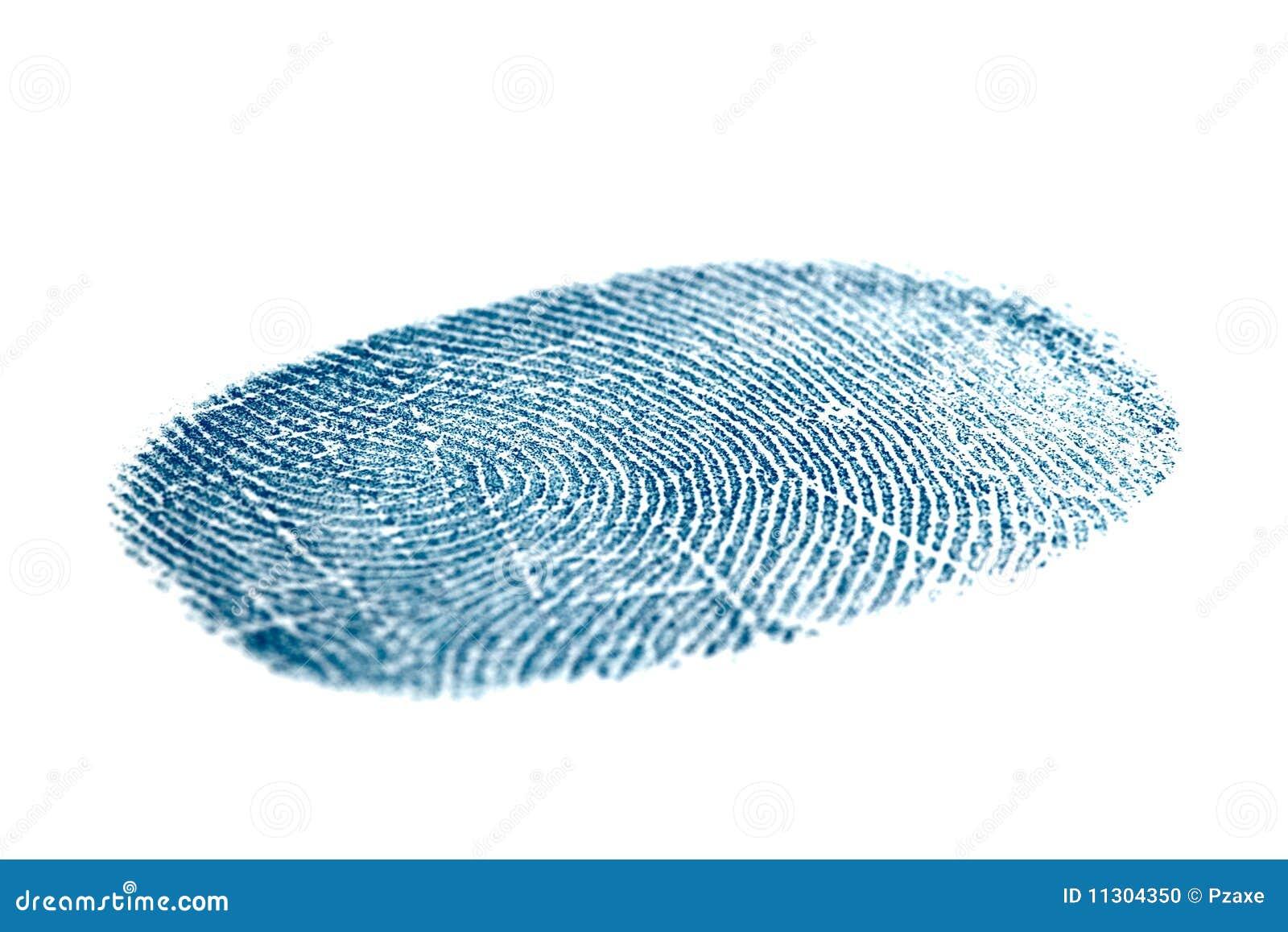 Blauer Fingerabdruck getrennt auf Weiß