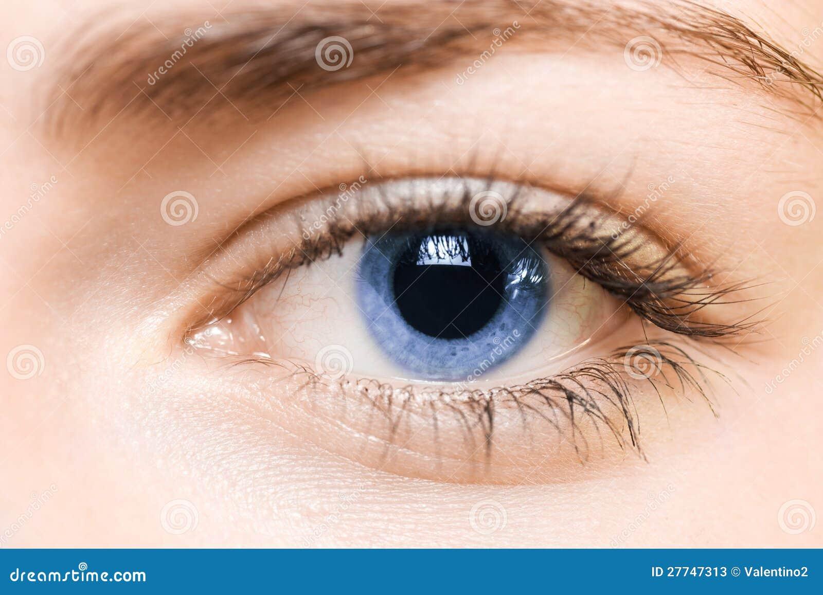 Schuster Blaues Auge