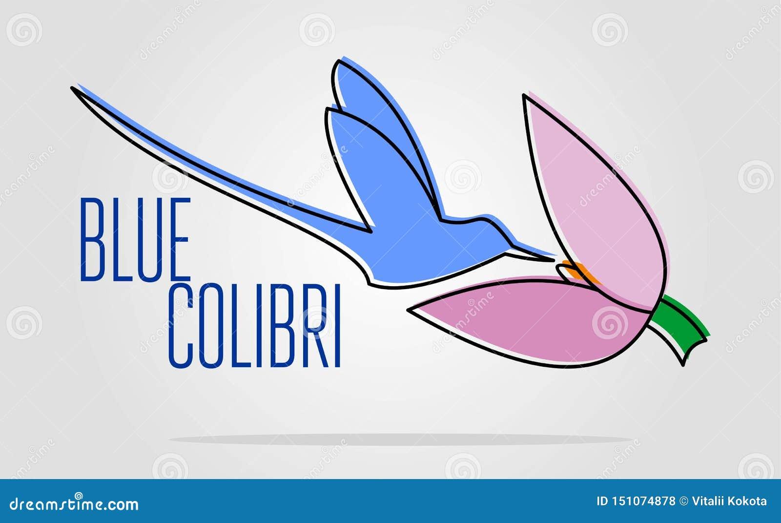 Blauw colibriembleem eenvoudige vlakke kleurenillustratie van het landen vogel