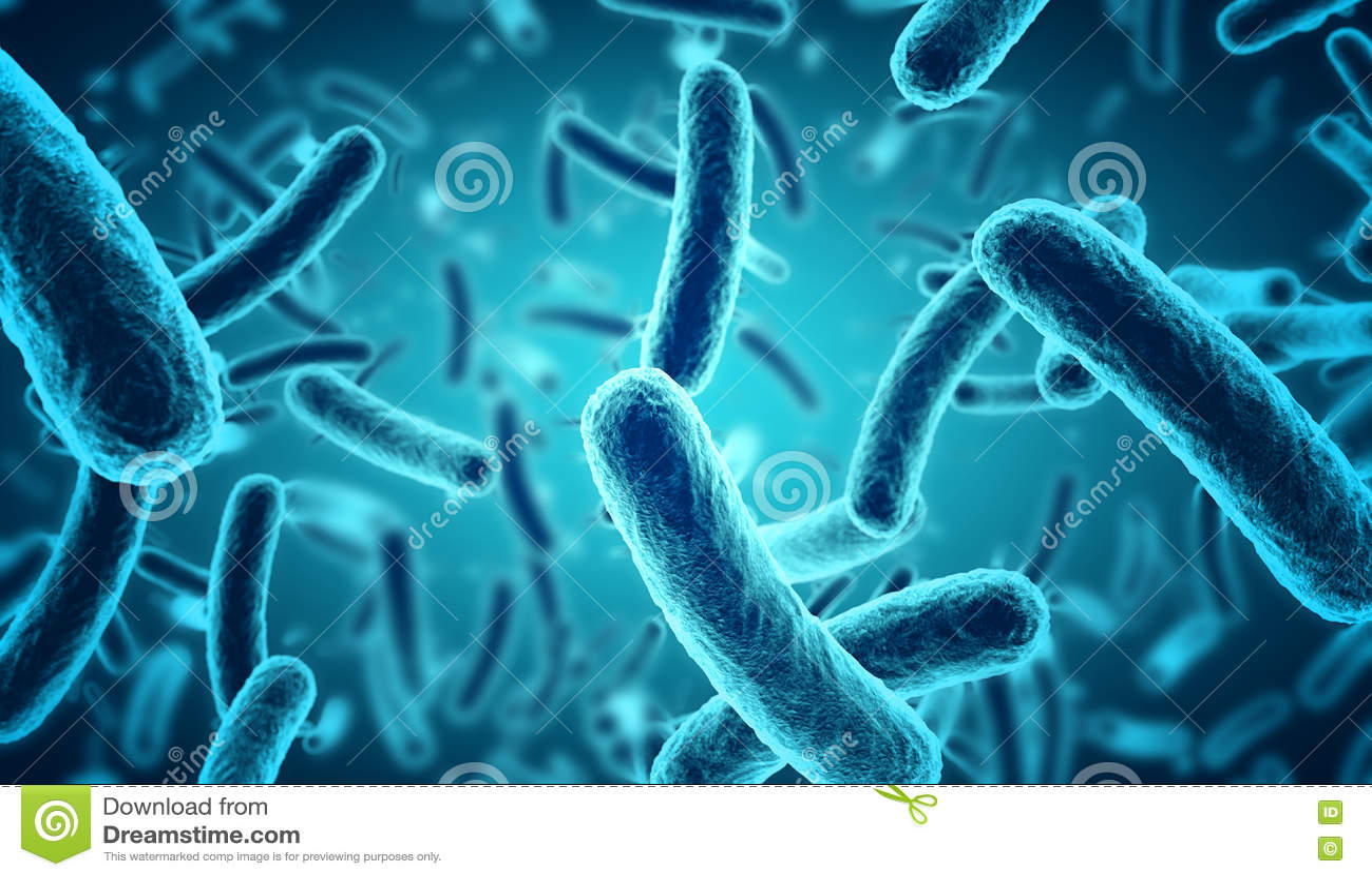 Blauwe bacteriën