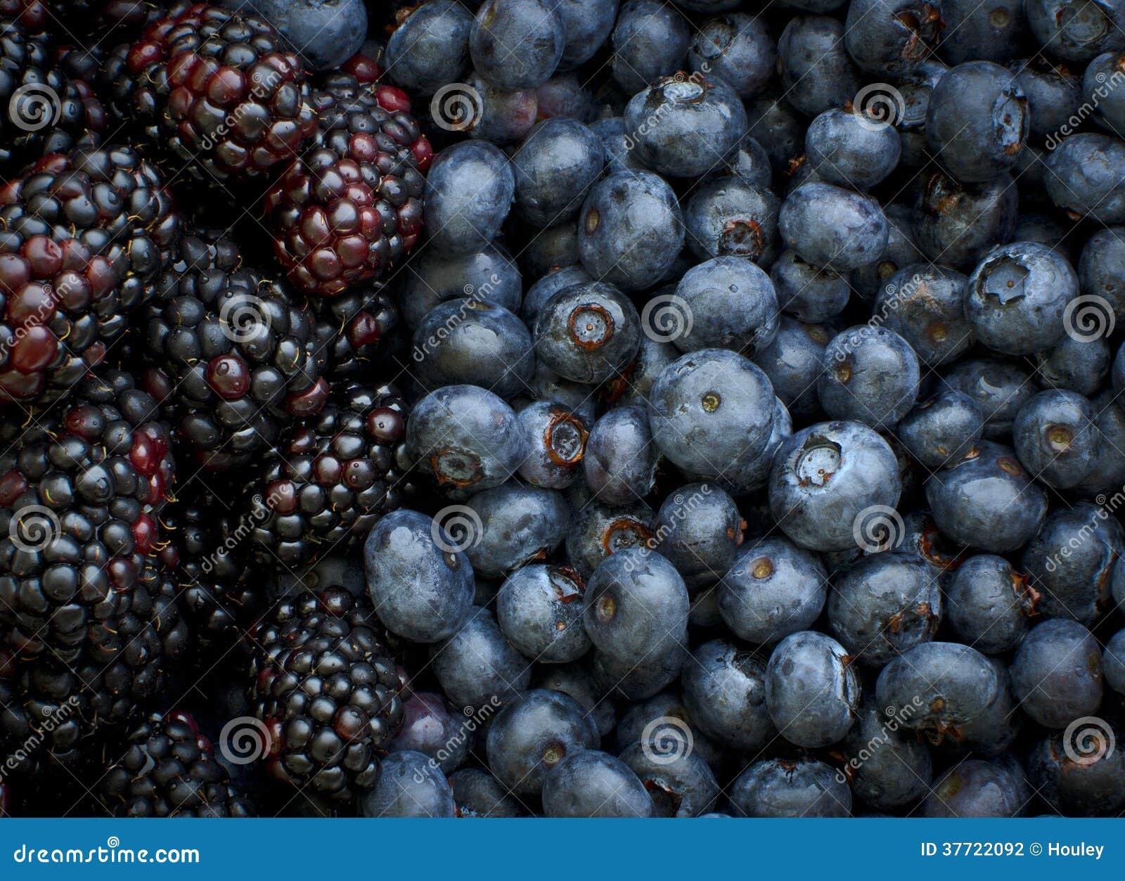 Blauwe Bessen en Zwarte Bessen