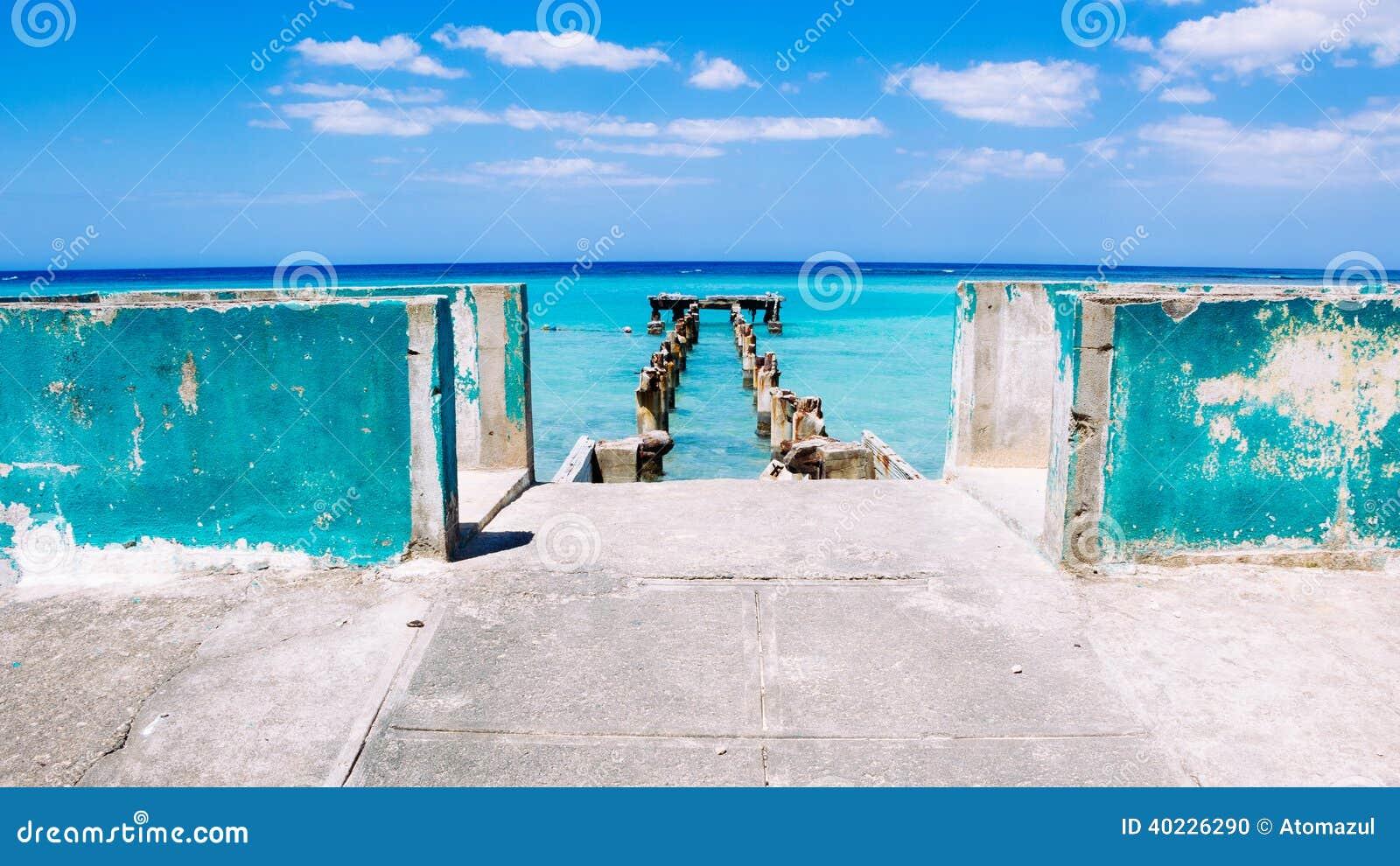 Blauwe Dokken 2 van Jamaïca