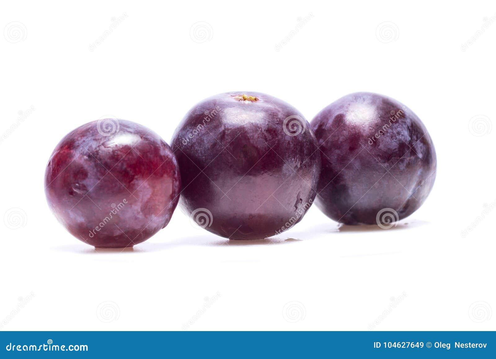Download Blauwe Druiven Met Waterdalingen Stock Afbeelding - Afbeelding bestaande uit gezond, helder: 104627649