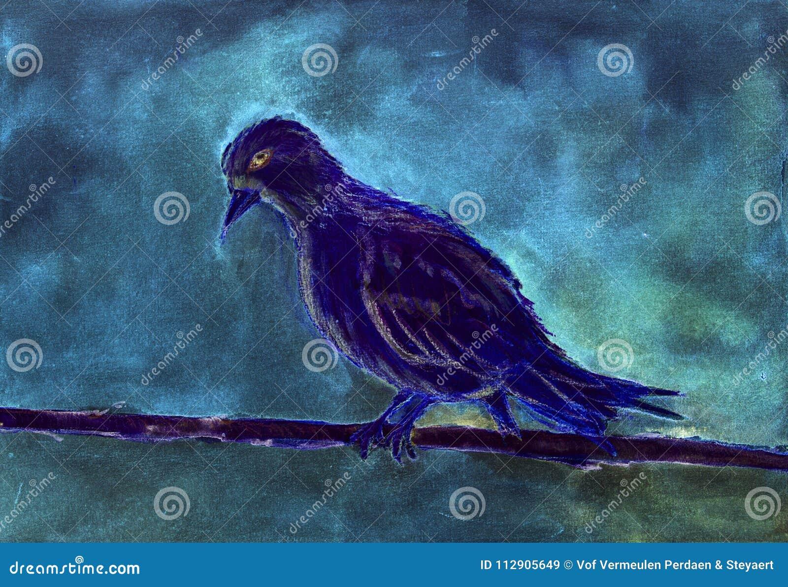 Blauwe duif bij dageraad
