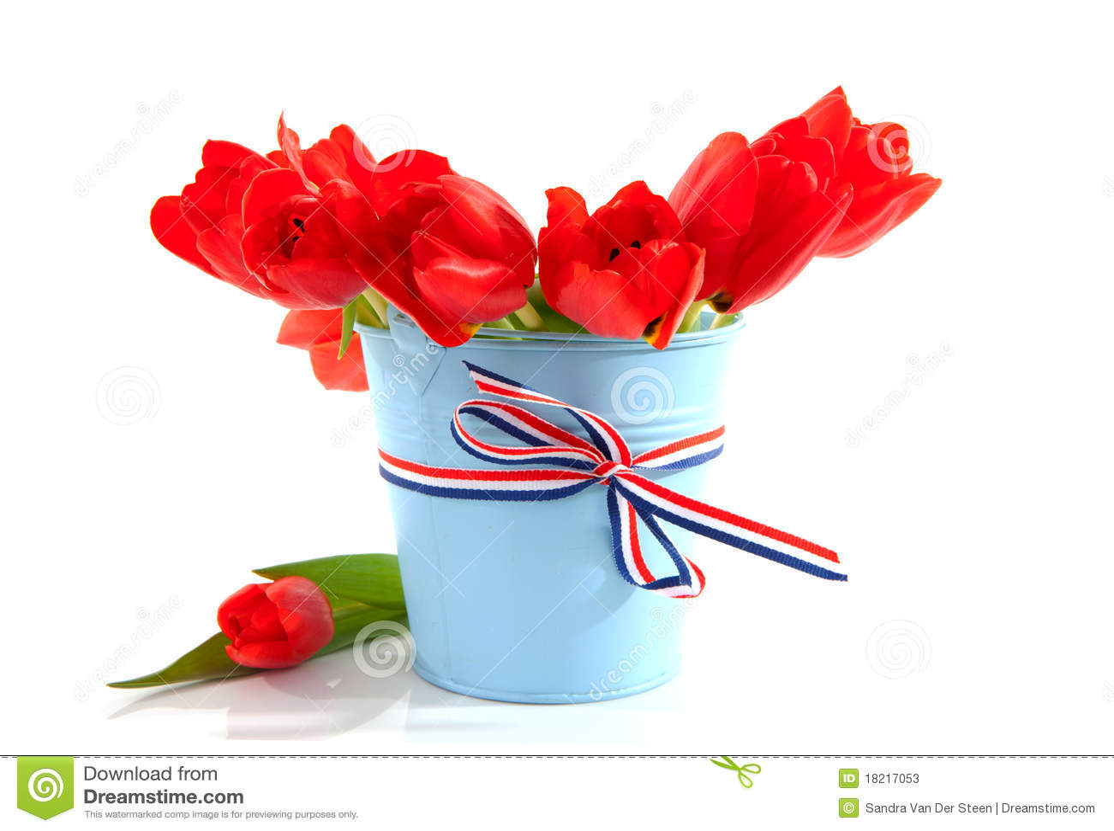 Blauwe emmer met rode tulpen