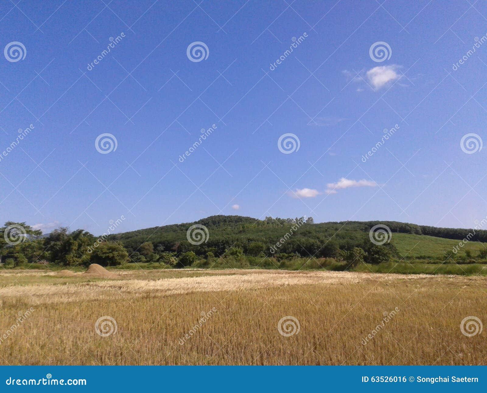 Blauwe hemel stock foto afbeelding bestaande uit gebied 63526016 - Blauwe hemel kamer ...