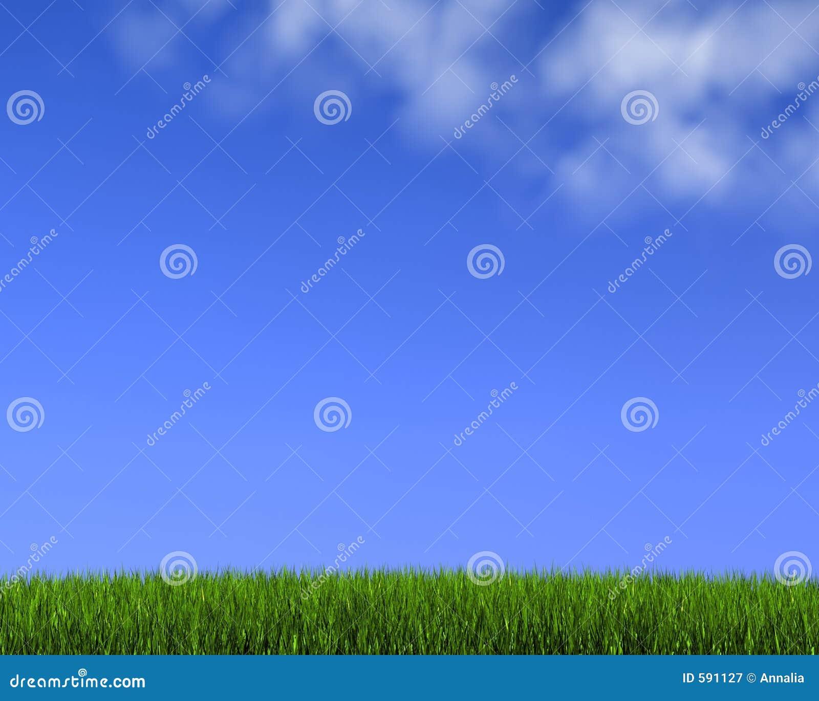 Blauwe hemel op gras