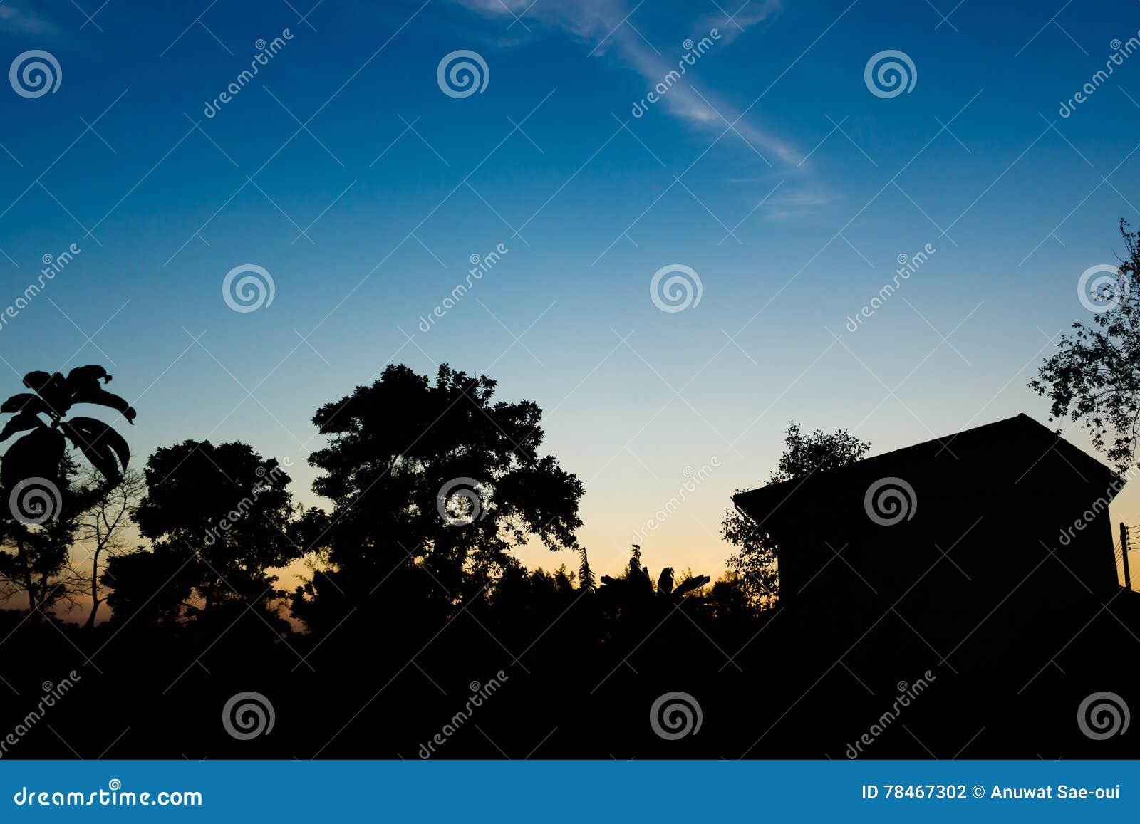 Blauwe hemelzonsondergang met siluate van boom en huis