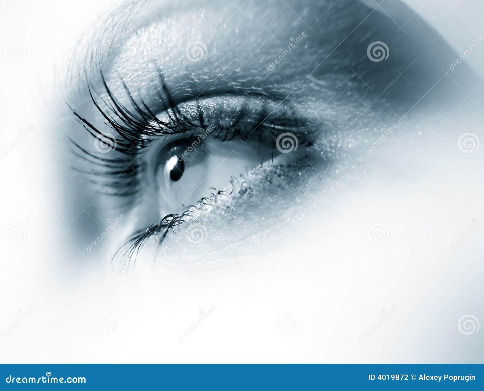 Blauwe oogmacro