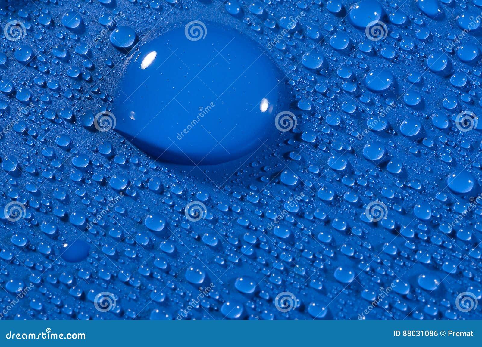 Blauwe shinny dalingen
