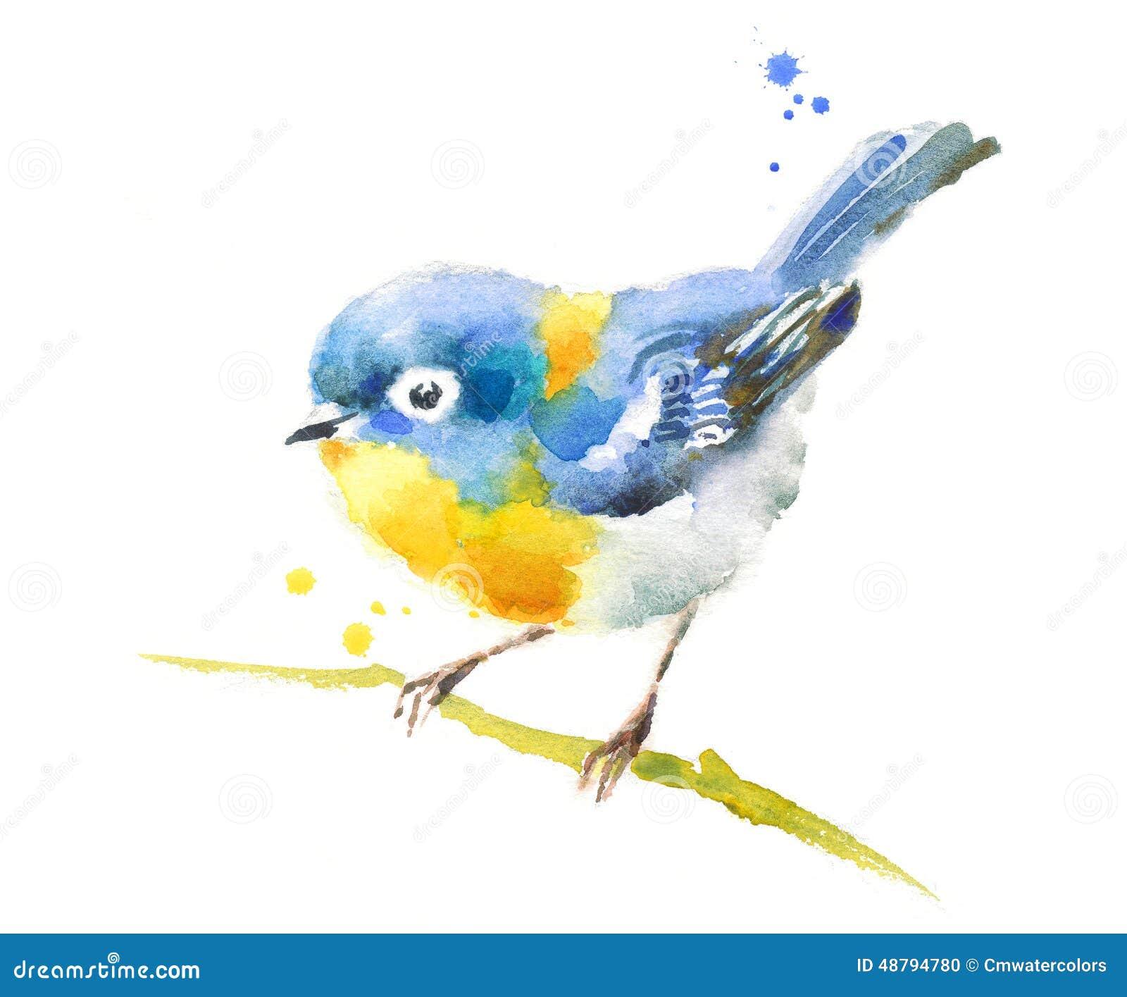 Blauwe vogel op de tak