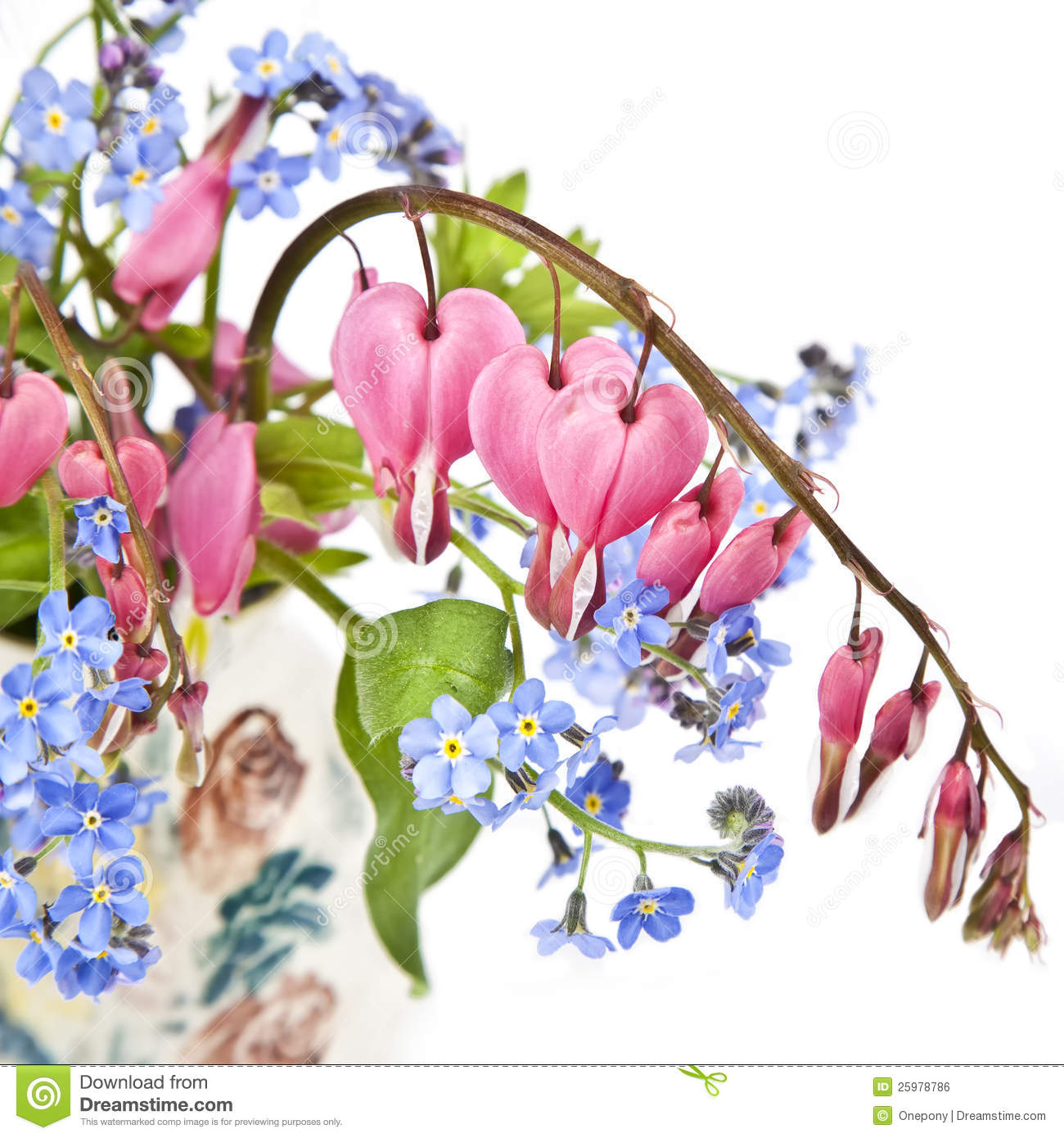 Bleeding heart bouquet stock photo image of pink natural 25978786 bleeding heart bouquet izmirmasajfo