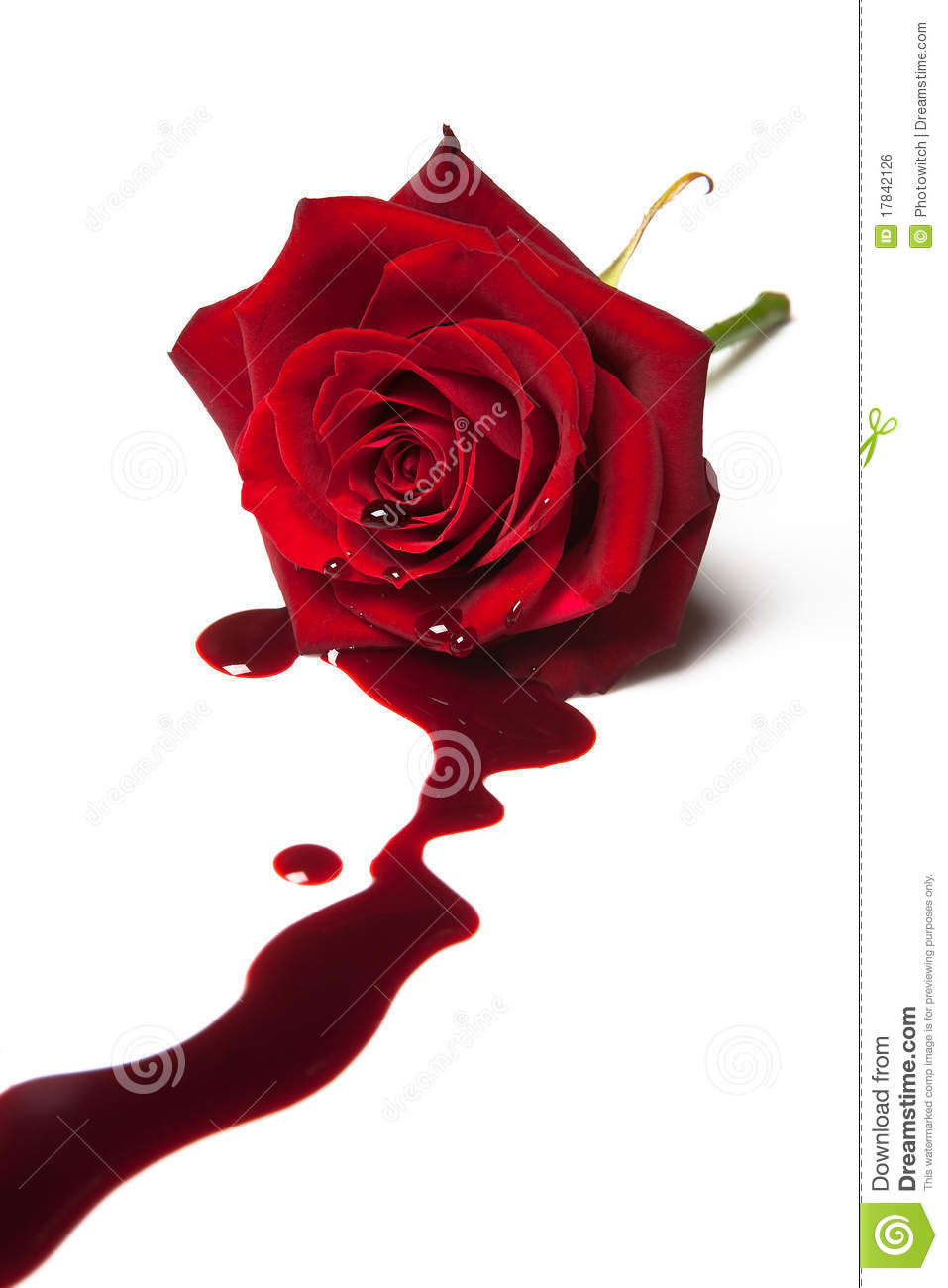 Bleeding Rose Royalty Free Stock Image - Image: 17842126 Cyber Bullying Clipart