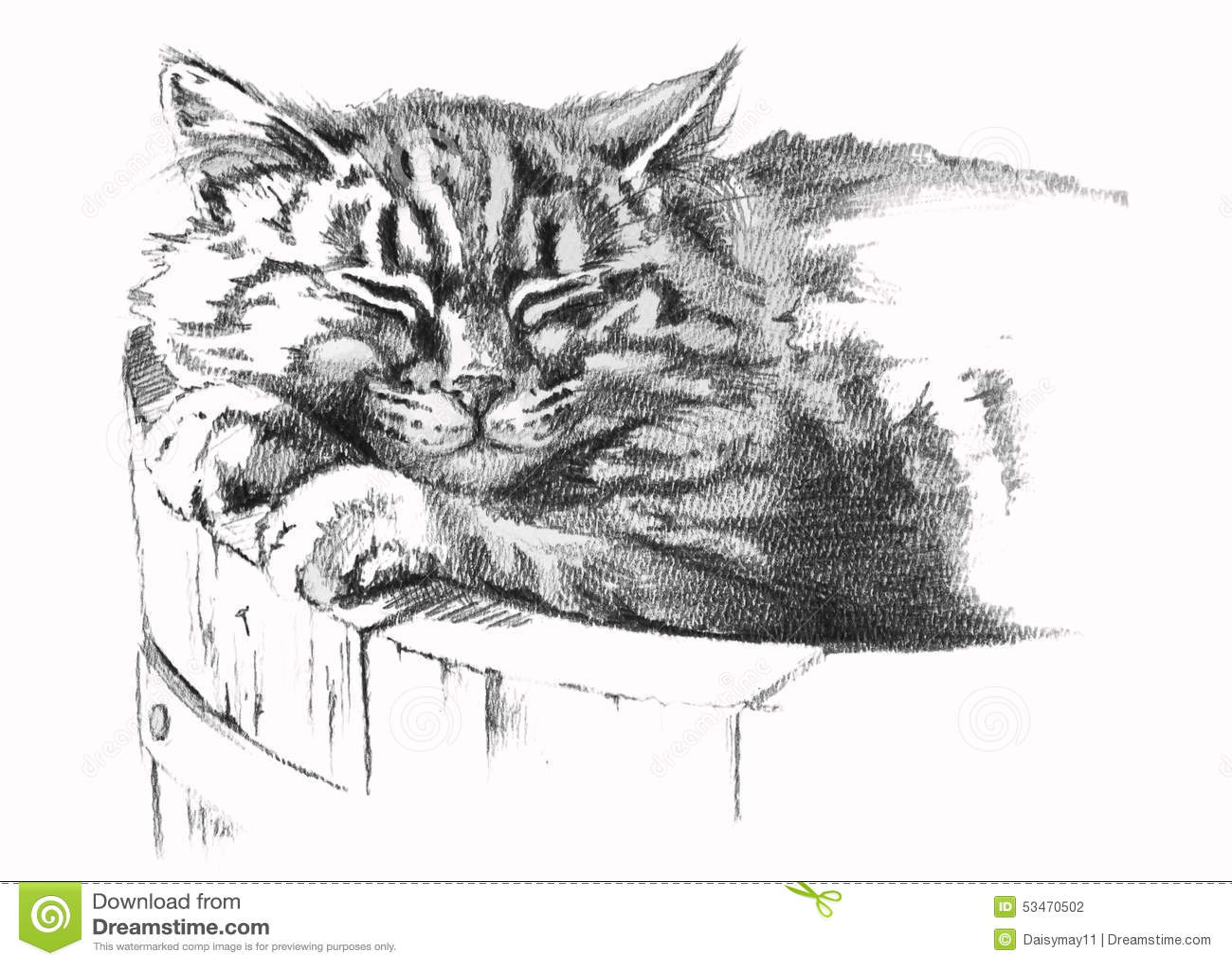 bleistift zeichnung der katze stock abbildung bild 53470502. Black Bedroom Furniture Sets. Home Design Ideas