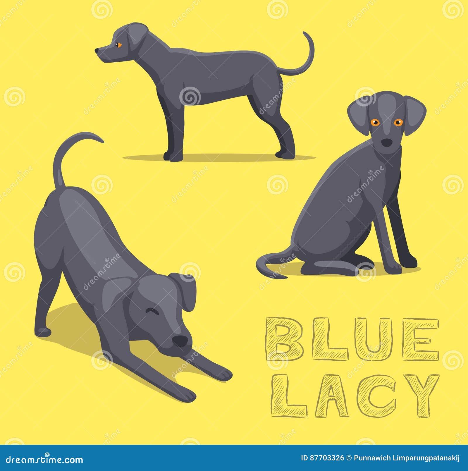 Bleu Lacy Cartoon Vector Illustration de chien