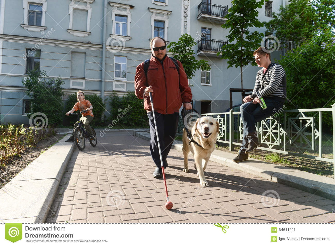 how are dogs trained to help blind people? essay Service dogs help people overcome the limitations of their disabilities and the barriers in their environments  when living with a trained service dog, people .