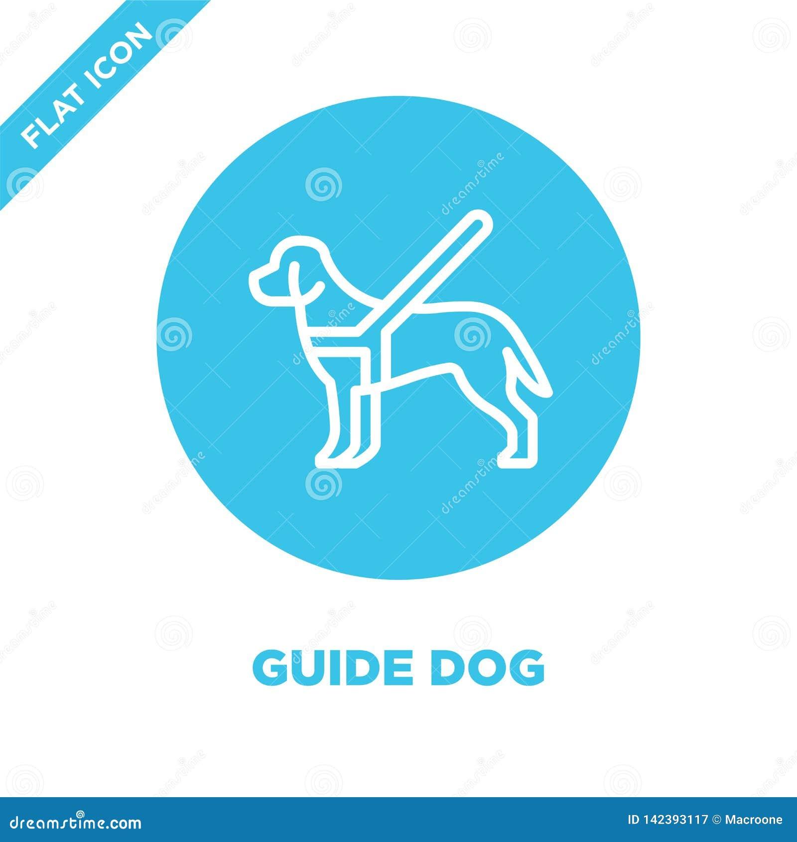 Blindenhundikonenvektor von der Zugänglichkeitssammlung Dünne Linie Blindenhundentwurfsikonen-Vektorillustration r