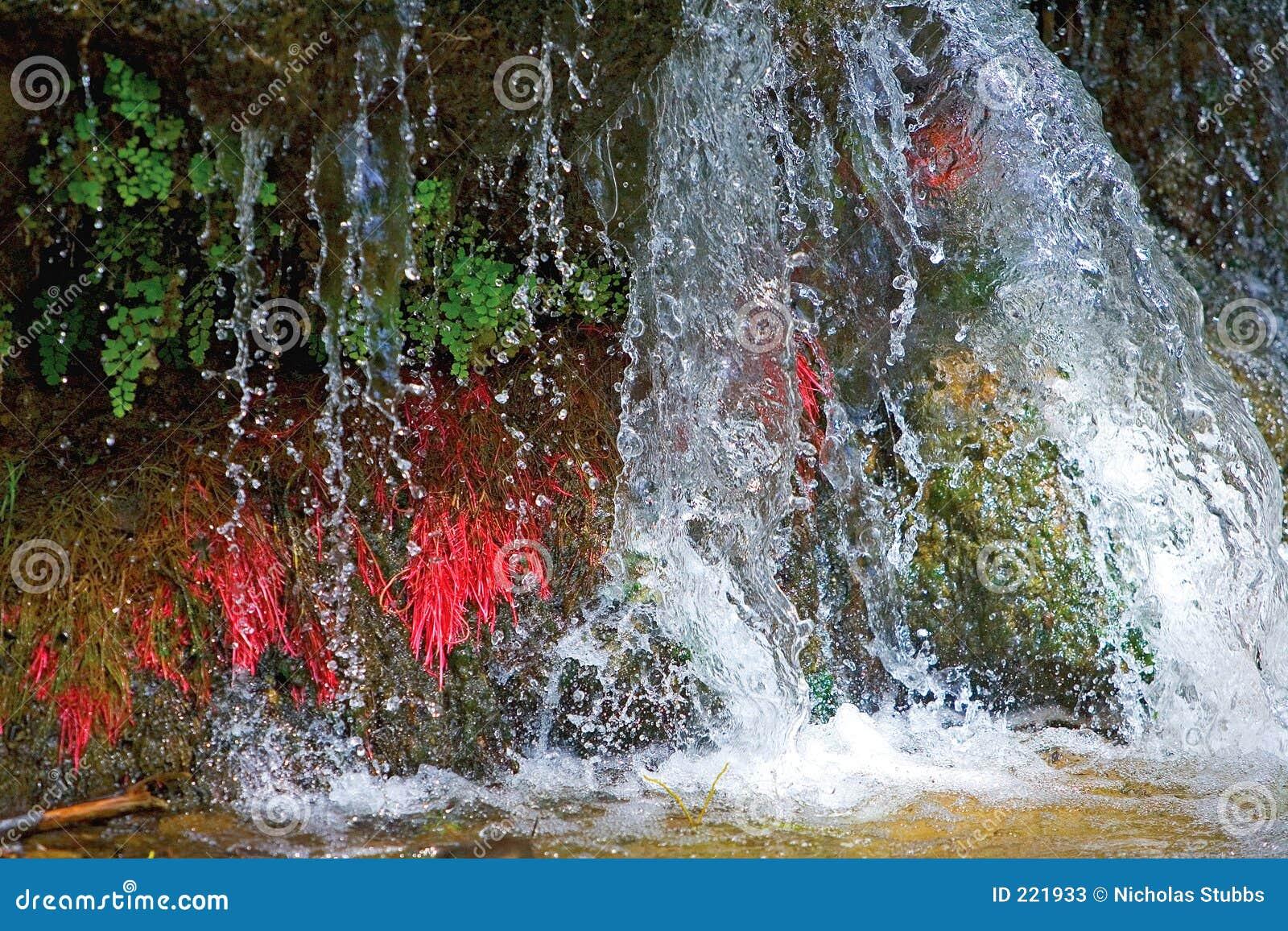 Blisko kolorowe mały Hiszpanii w górę wodospadu