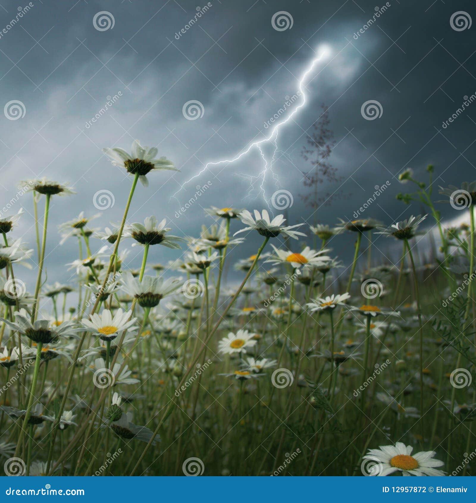 Blitzschlag über Feld.