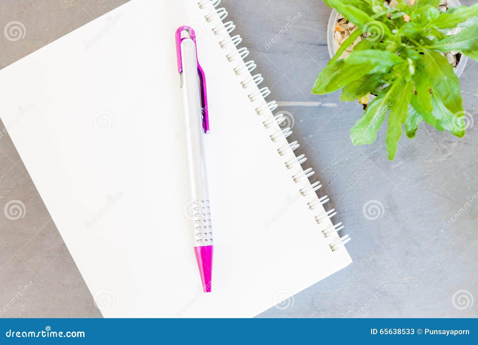 Bloc-notes, stylo et plante verte sur le fond gris