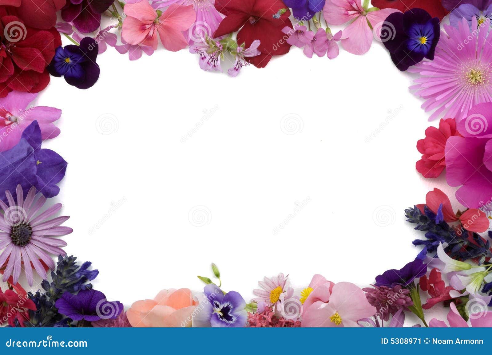 Download Blocco Per Grafici Floreale Della Priorità Bassa Immagine Stock - Immagine di testa, botanica: 5308971