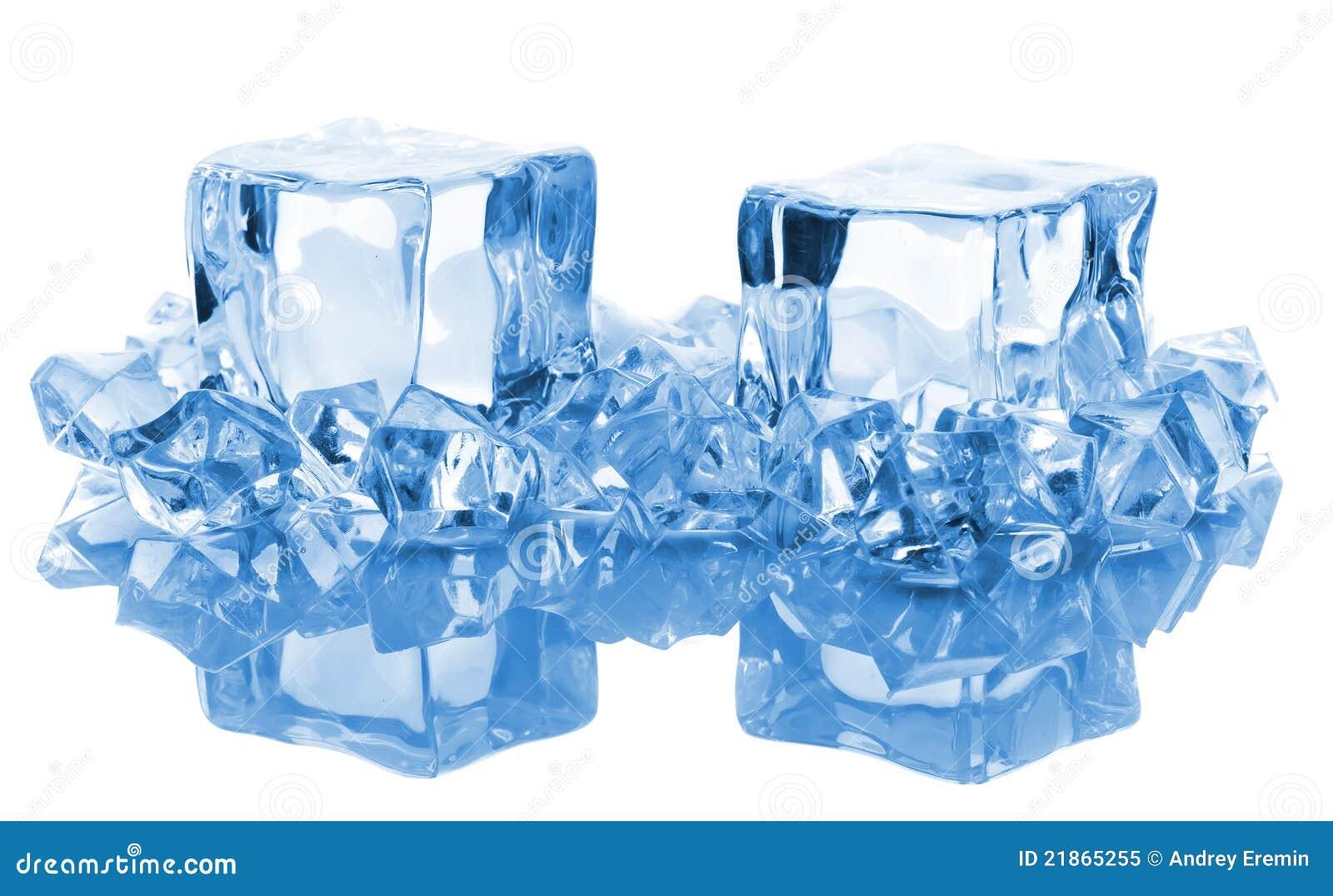ice block business plan