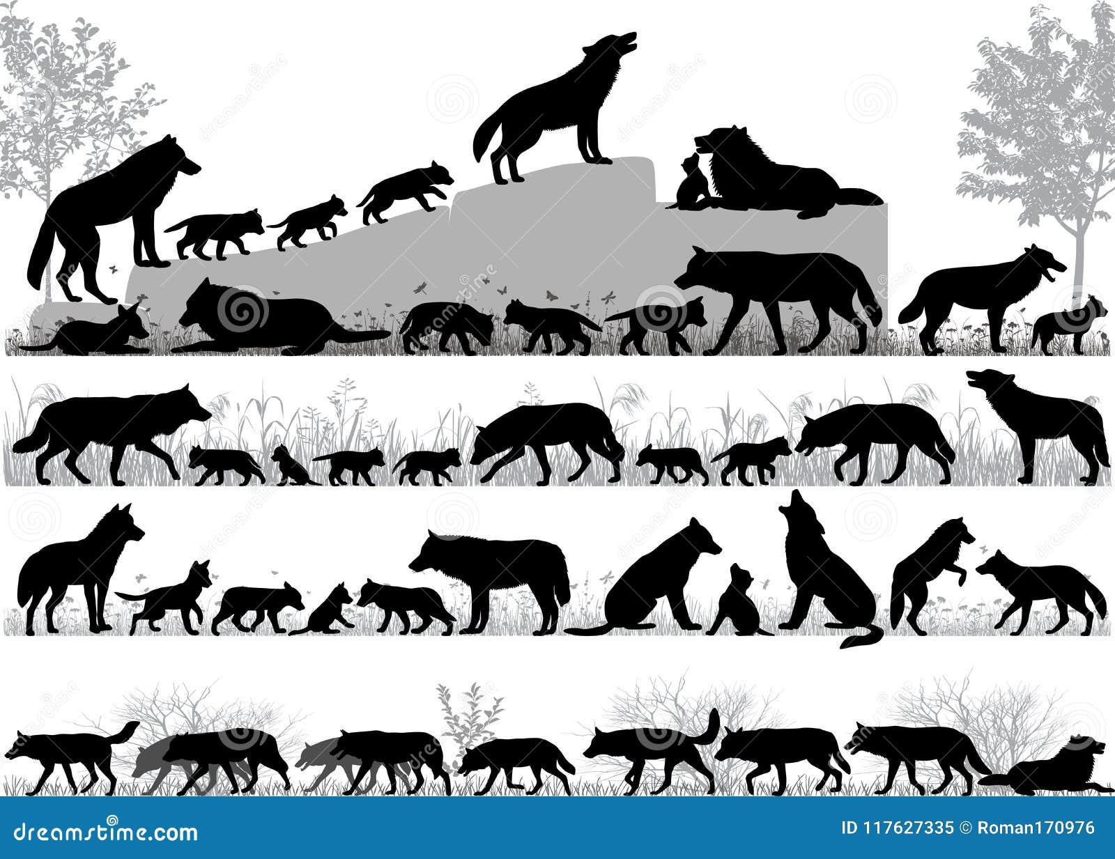 Bloco dos lobos