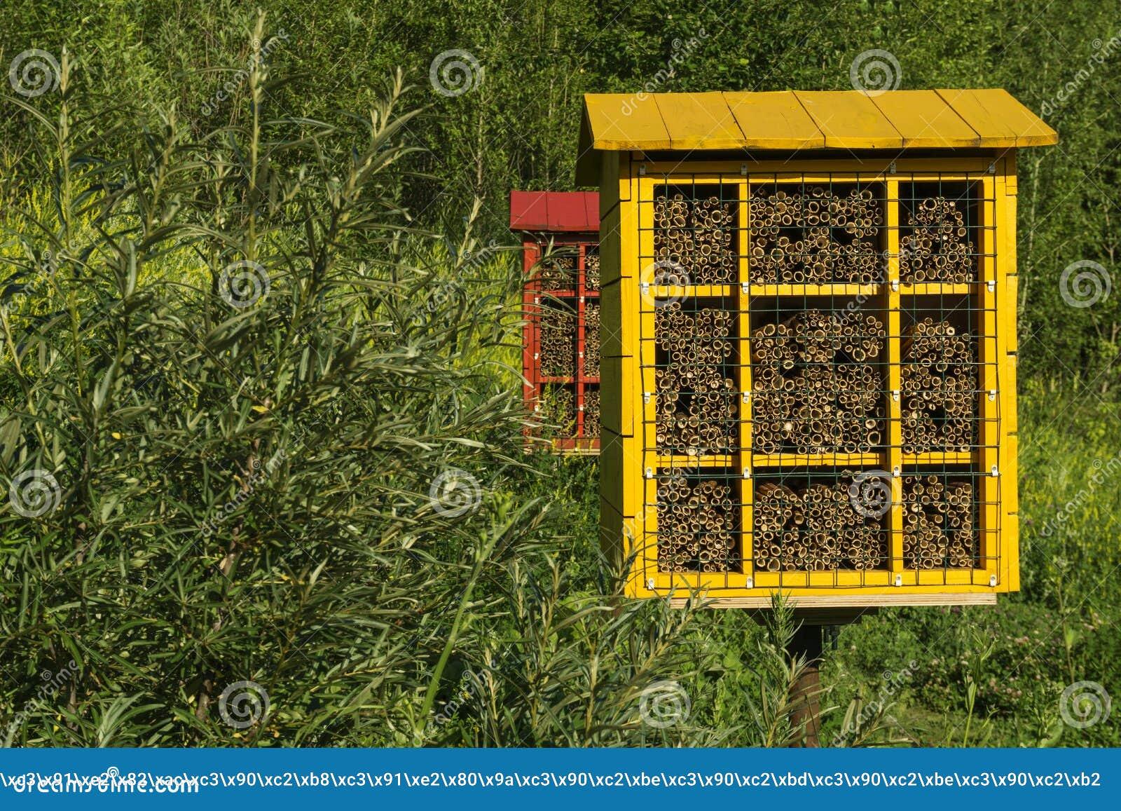 Blocos caseiros do ninho para abelhas de pedreiro para a polinização das plantas