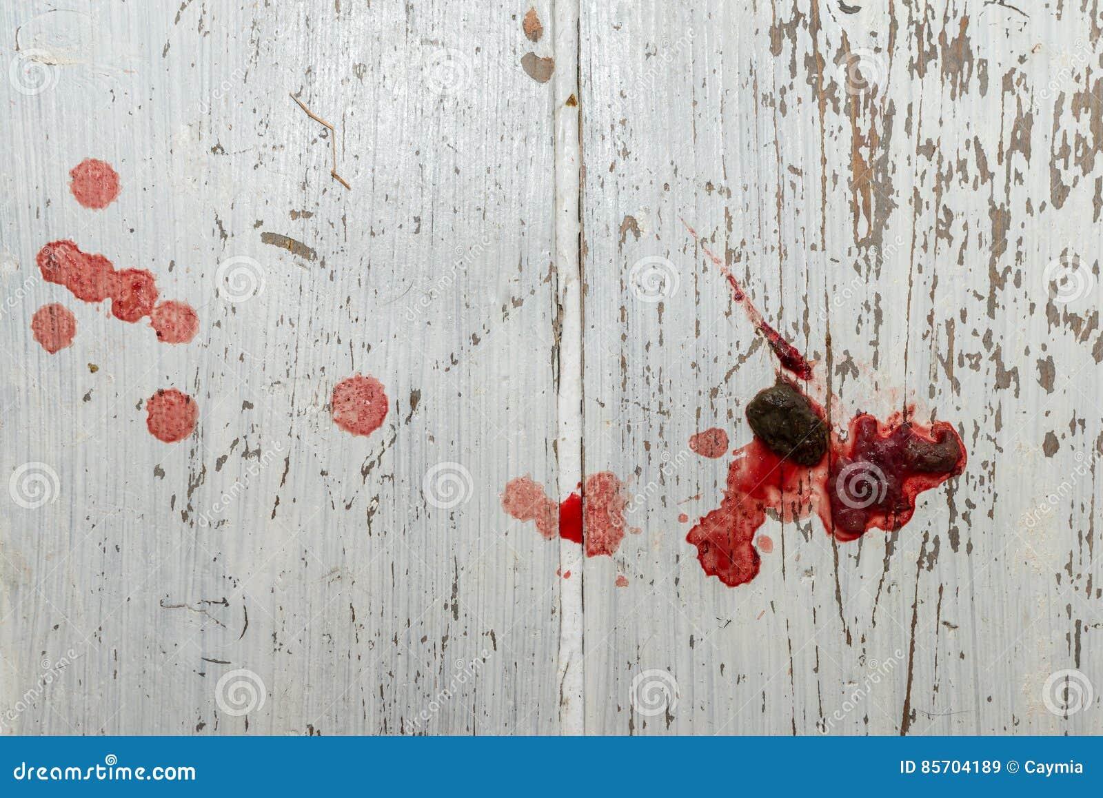 Blod i avföring hund