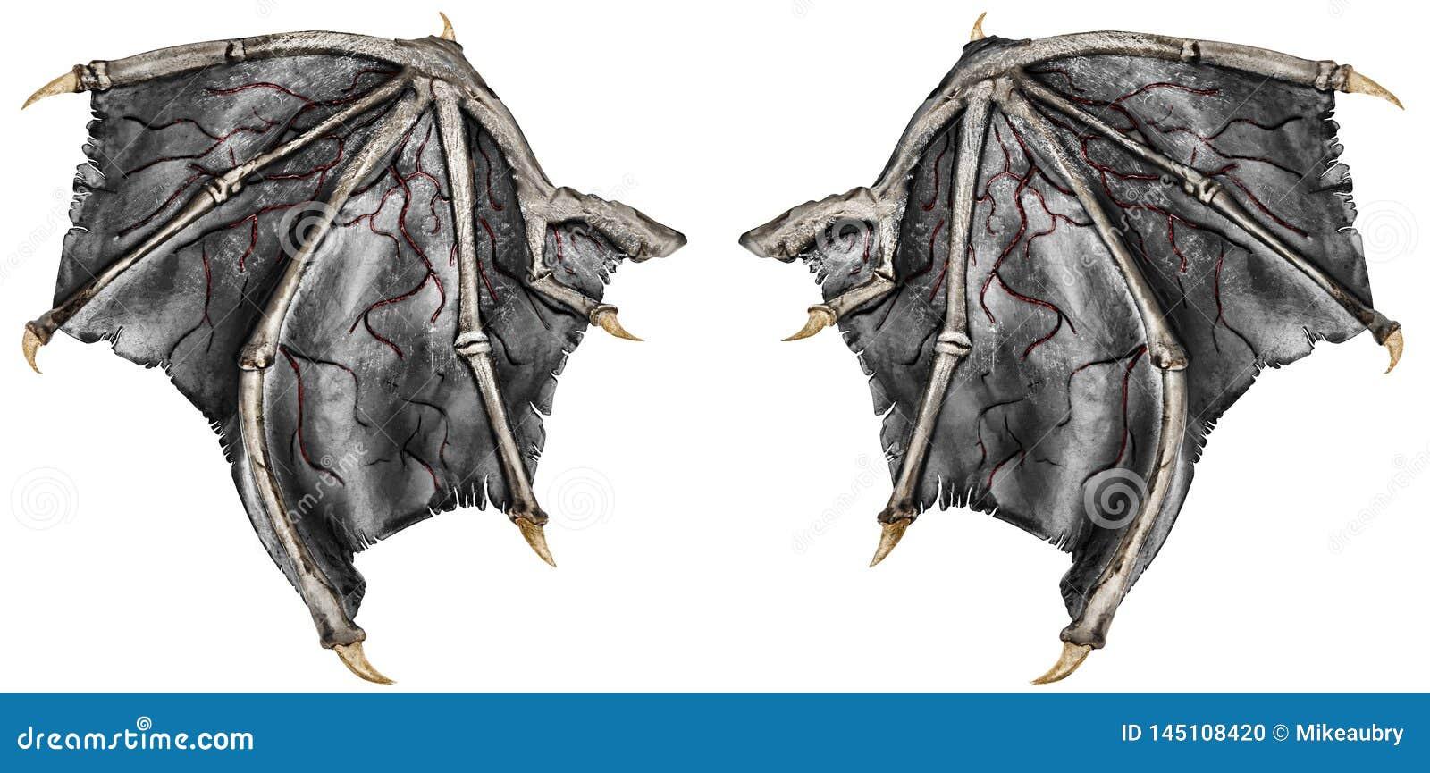 Bloedige draakvleugels, die op witte achtergrond worden ge?soleerd