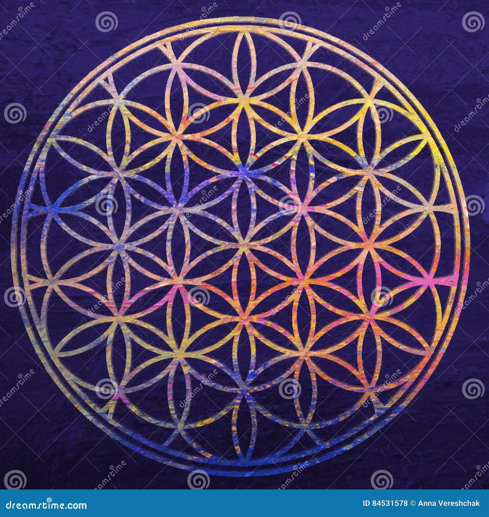 Bloem van het leven Heilige Meetkunde De illustratie van de bloemZen van Lotus Mandalaornament Esoterisch of geestelijk symbool B