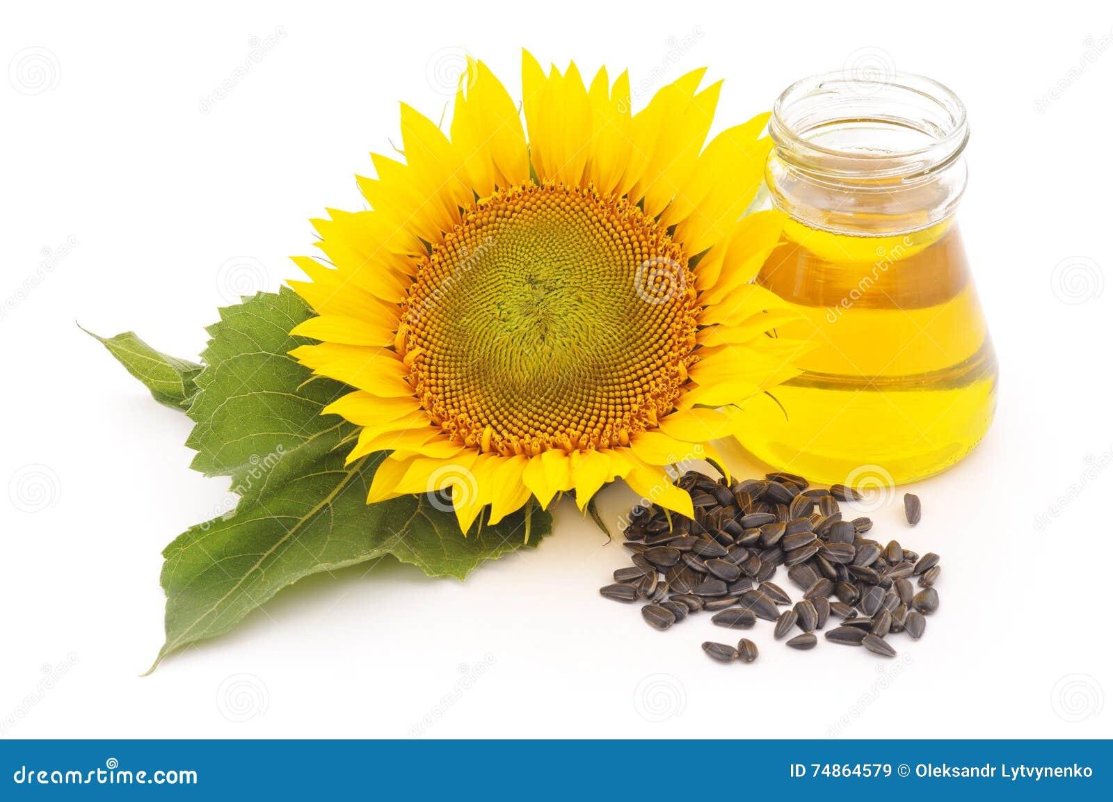 Bloem van zonnebloemzaden en olie