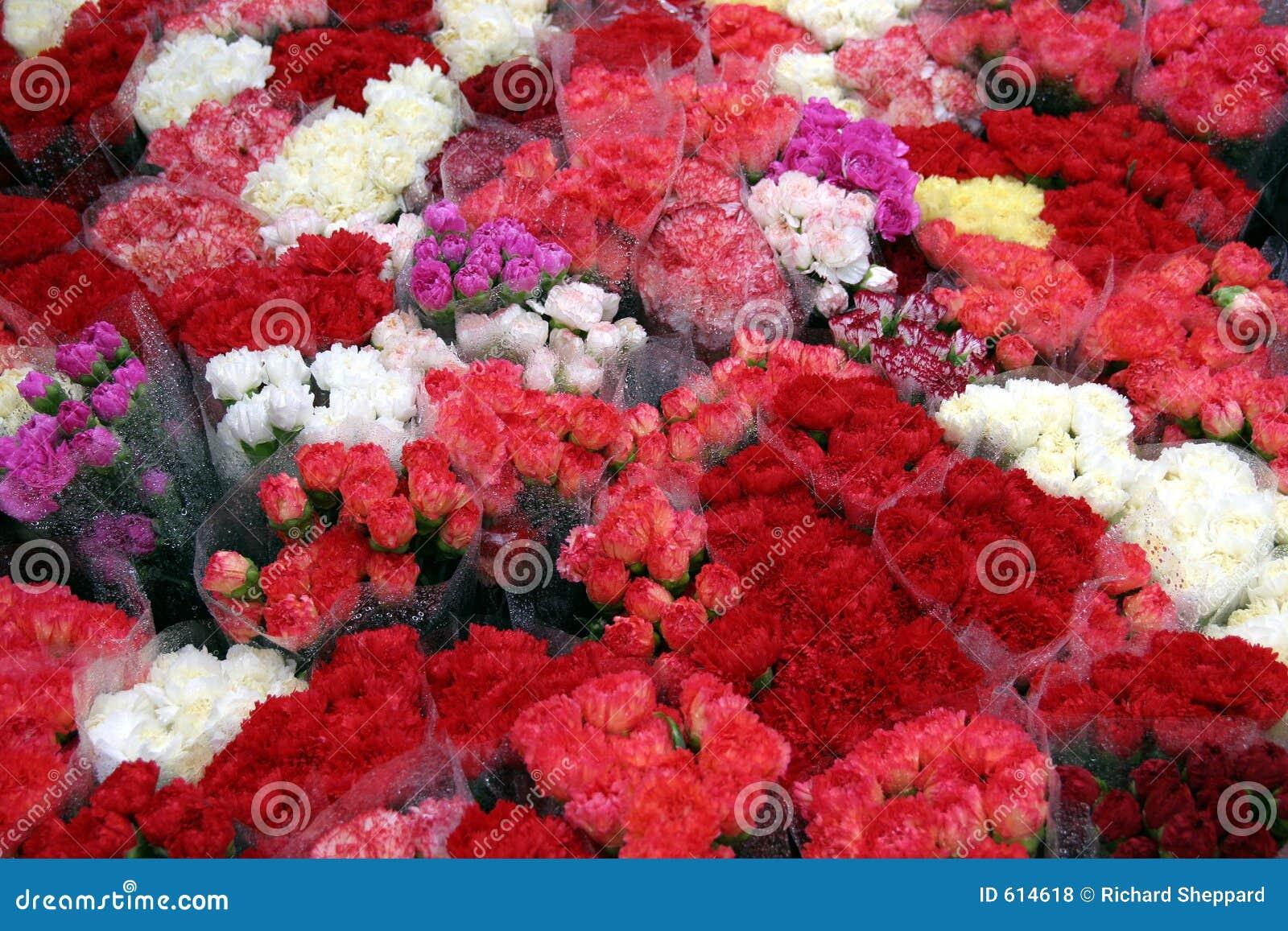 Bloemen in de regen