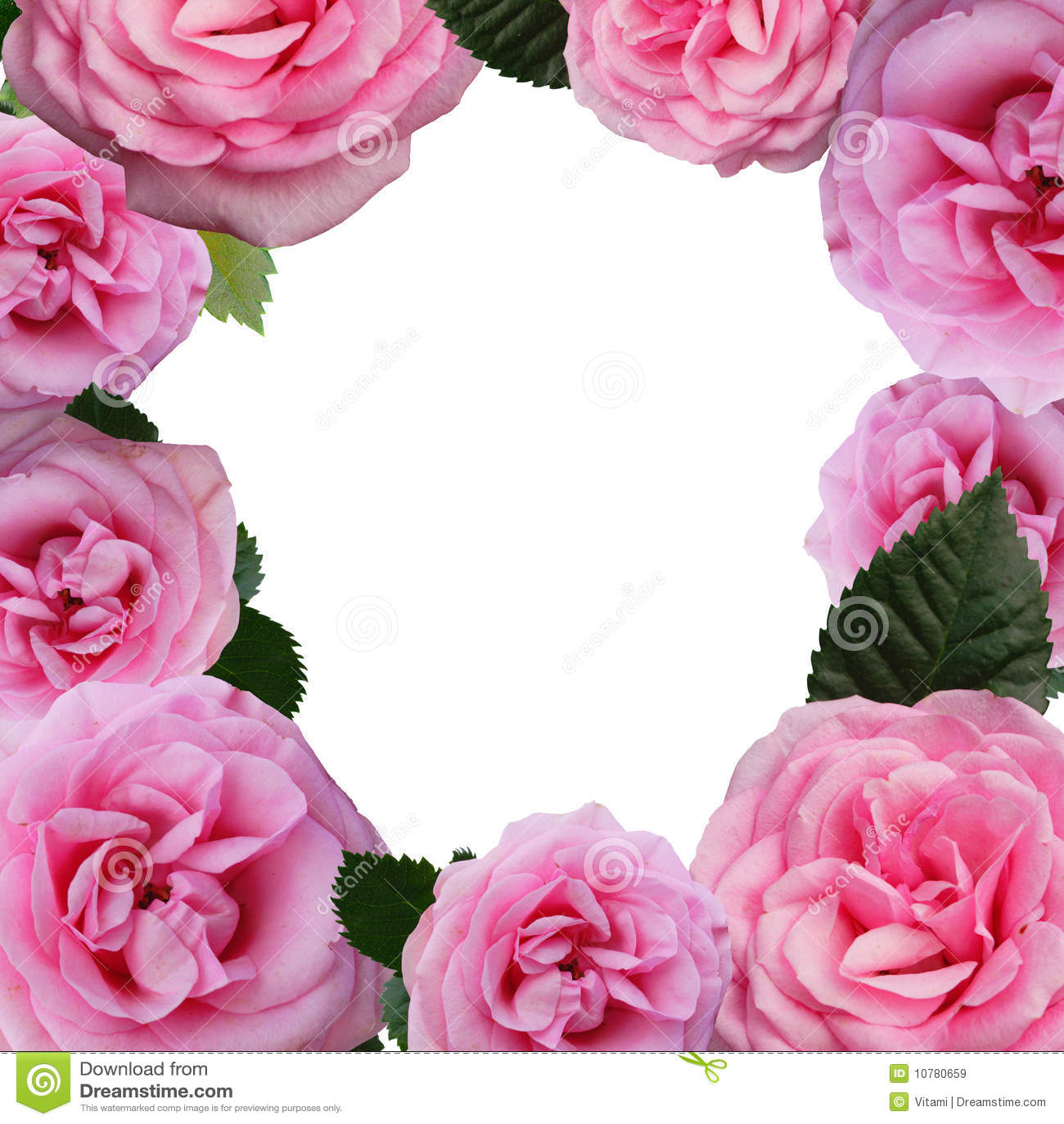 Bloemen frame - rozen
