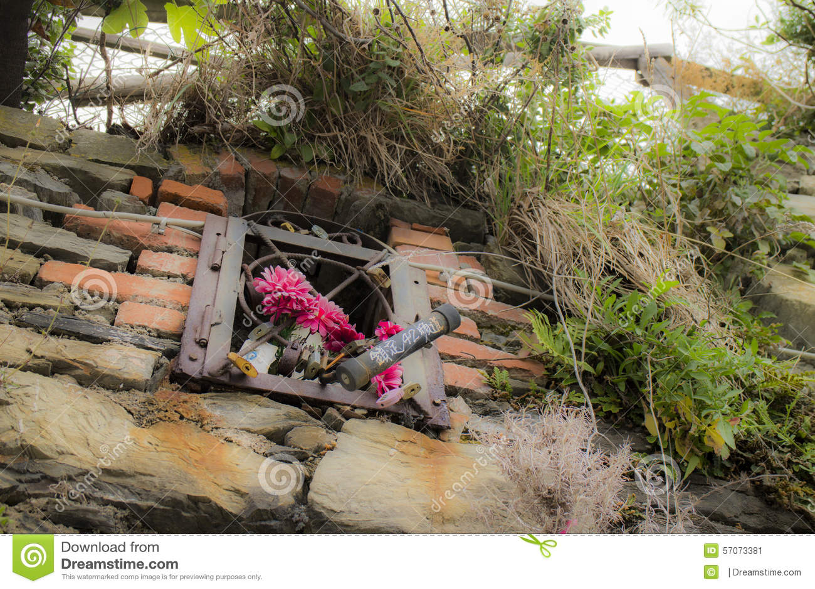 Bloemen op de muur in Riomaggiore in La Spezia
