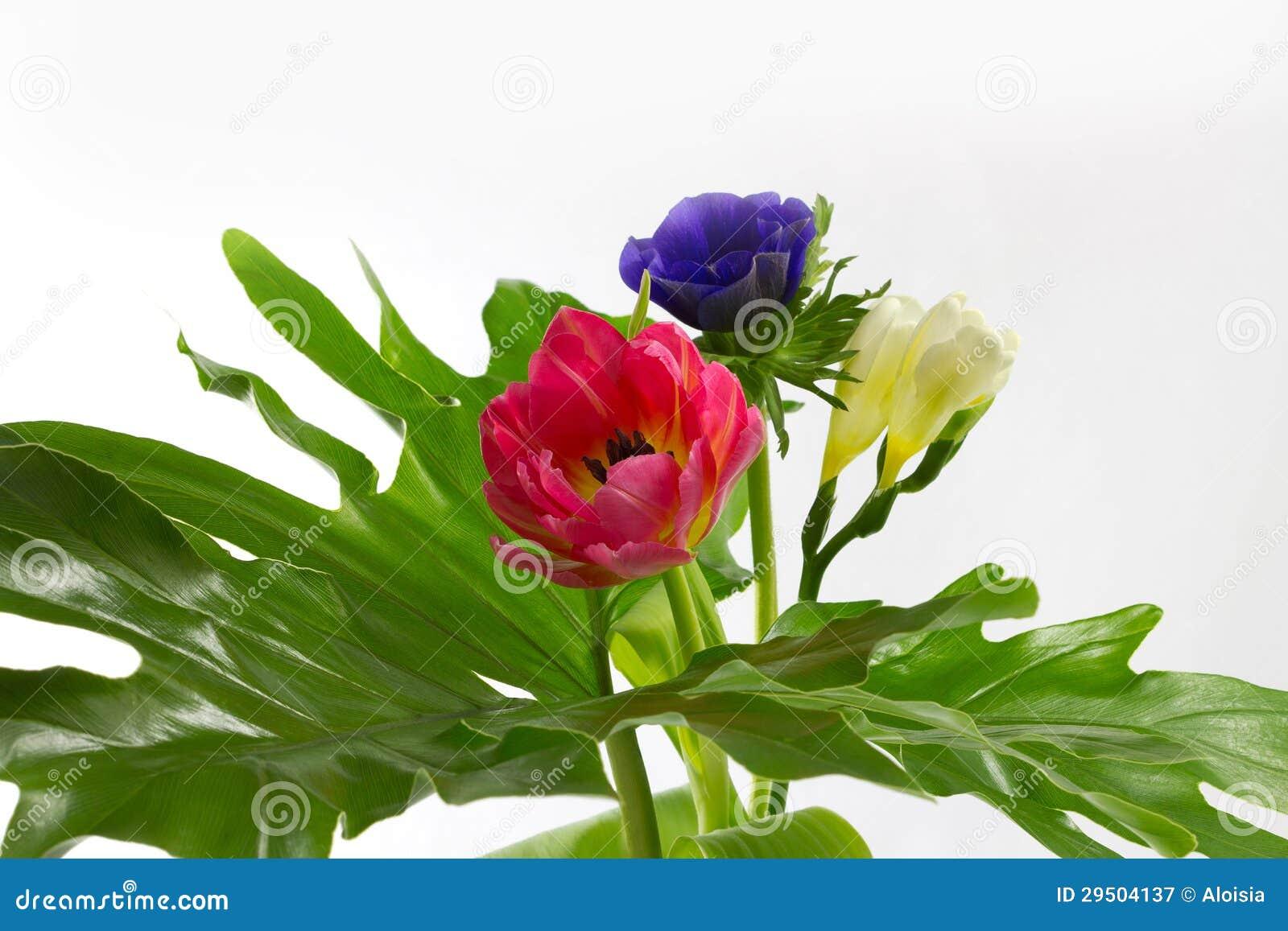 Bloemen op een groot blad