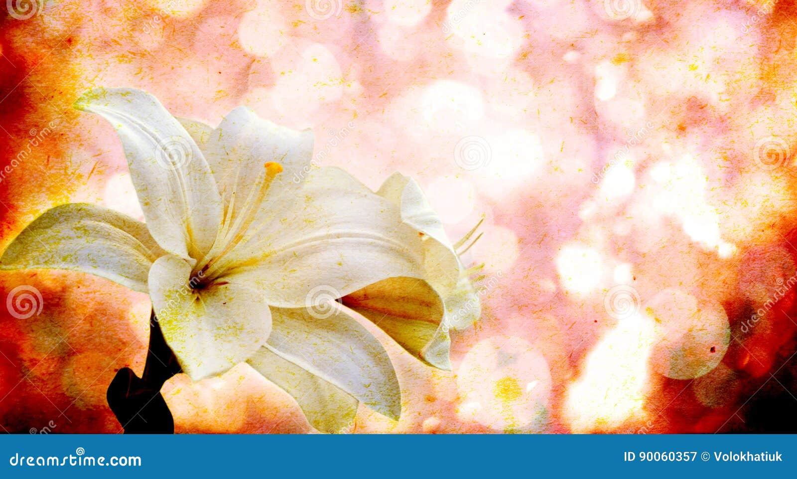 Bloemen op een uitstekende achtergrond