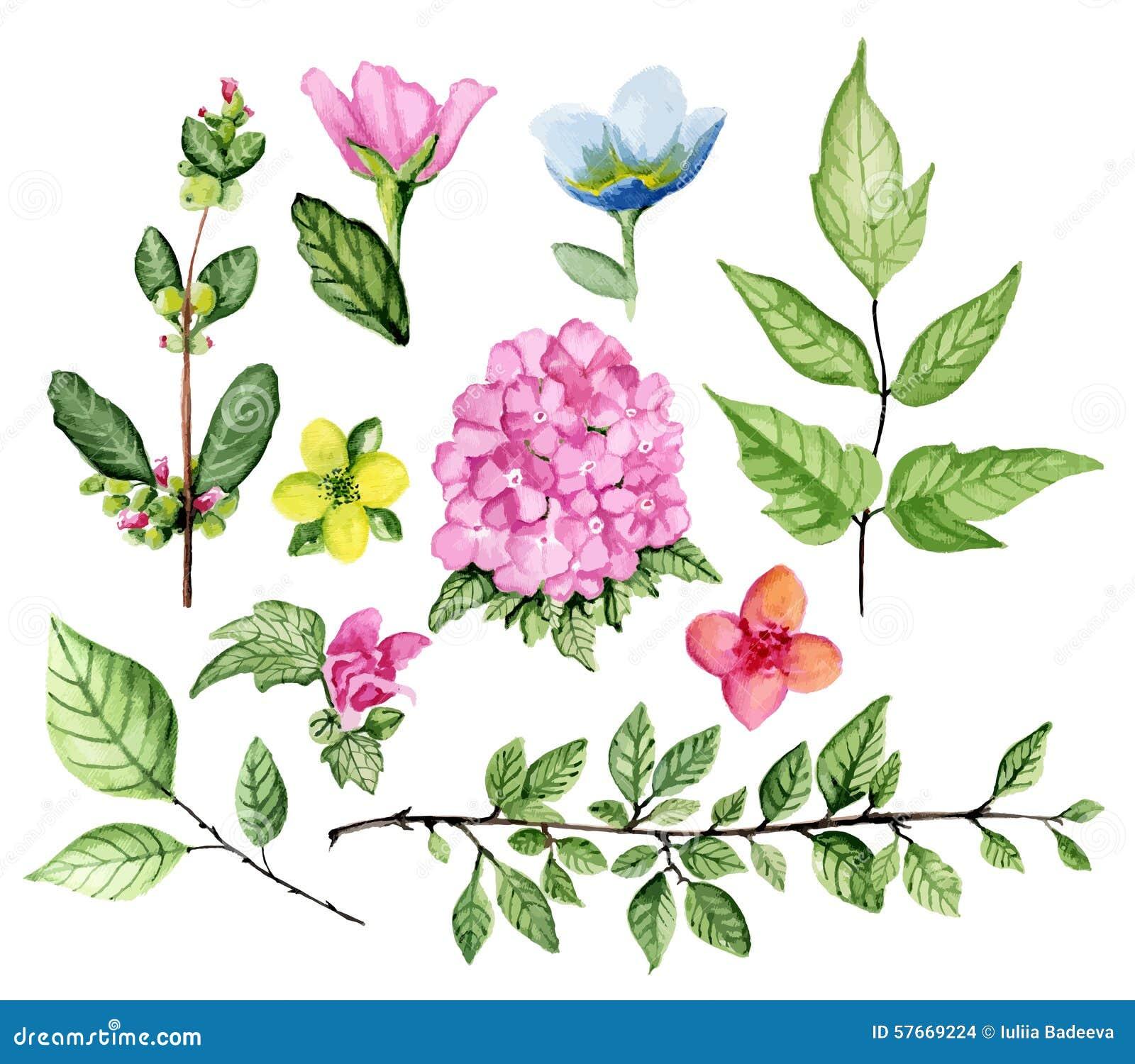 Bloemen reeks