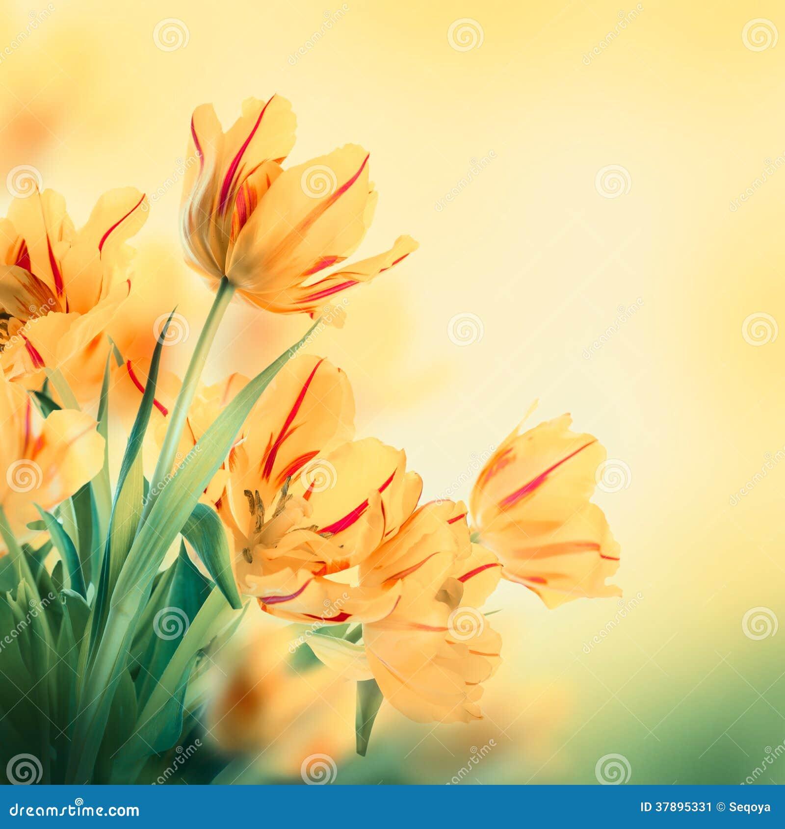Bloemenachtergrond.
