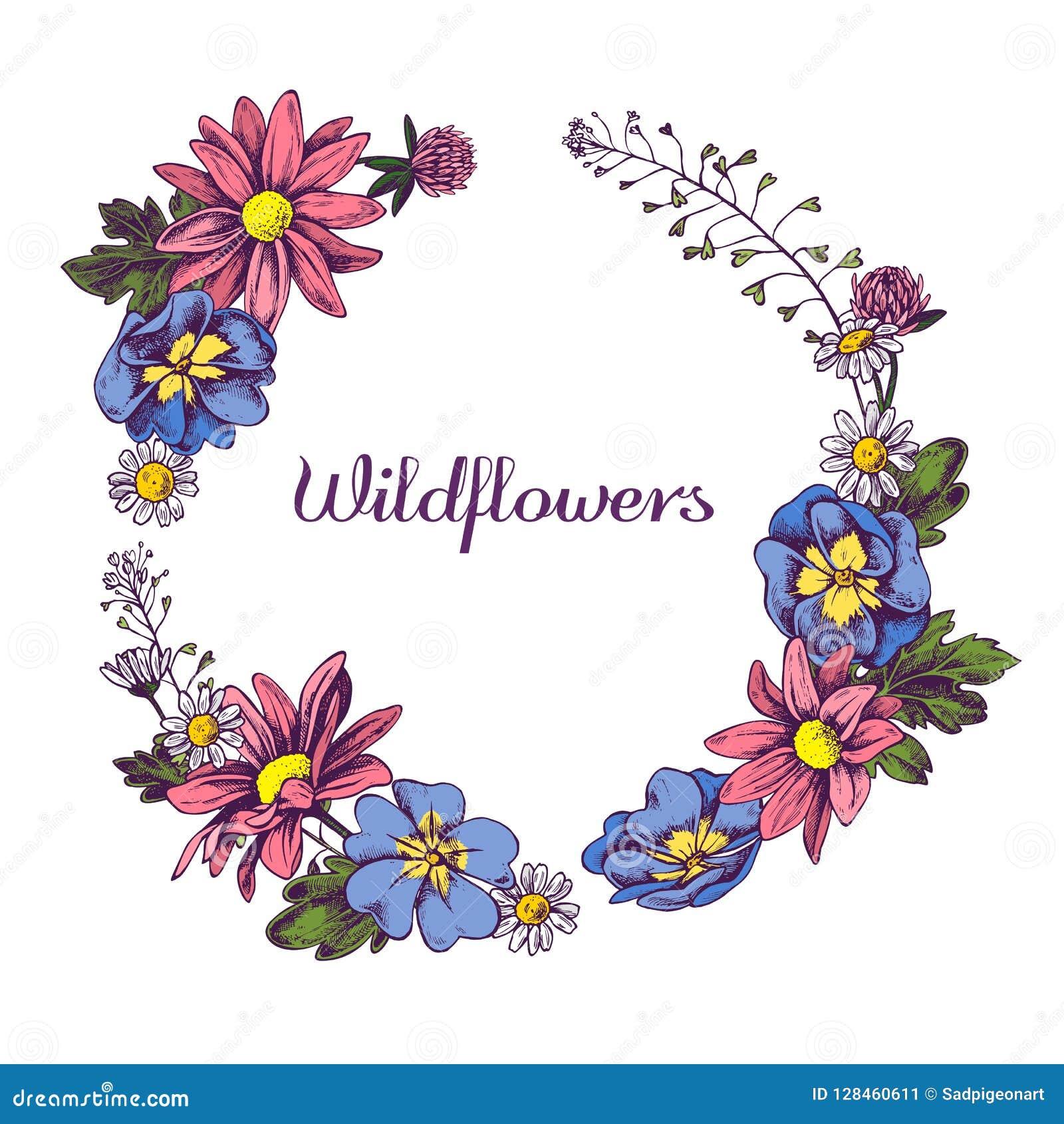 Bloemenkroon van getrokken vectorillustation van Wildflowers Hand