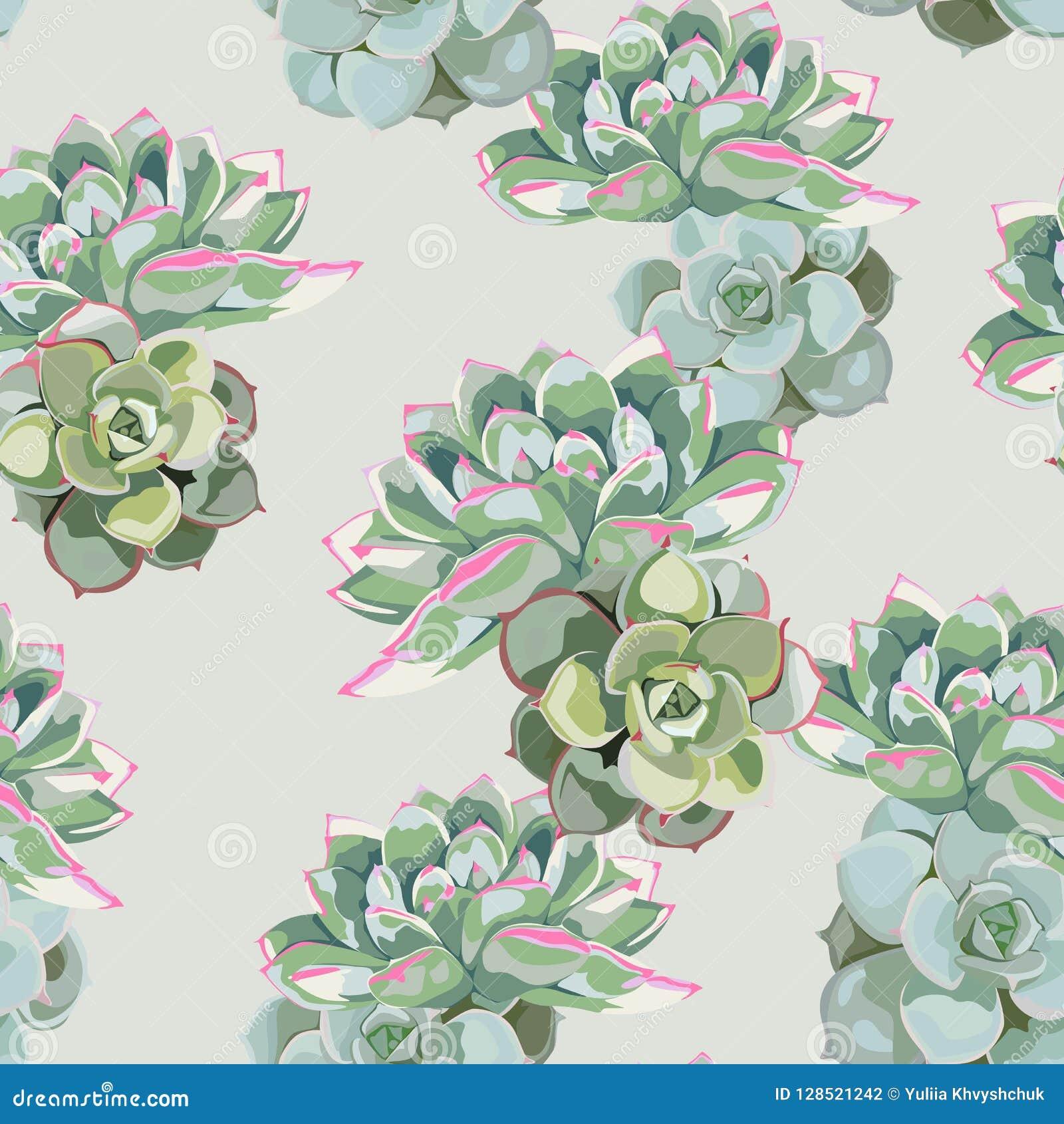 Bloemenpatroon, gevoelig bloembehang, groene roze succulent Gevoelig vrouwelijk patroon