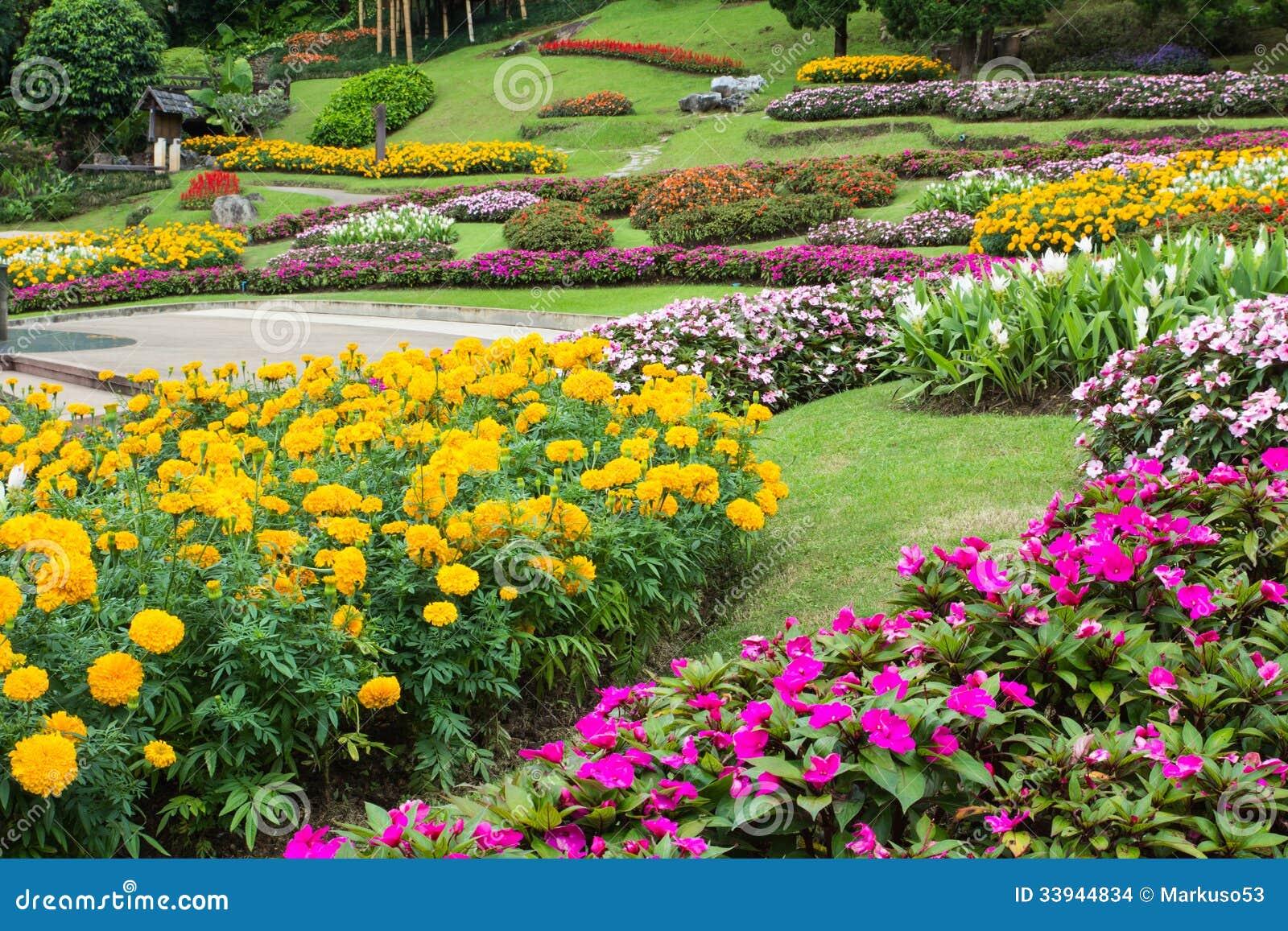 Bloementuin stock foto afbeelding bestaande uit for Www bloem en tuin nl